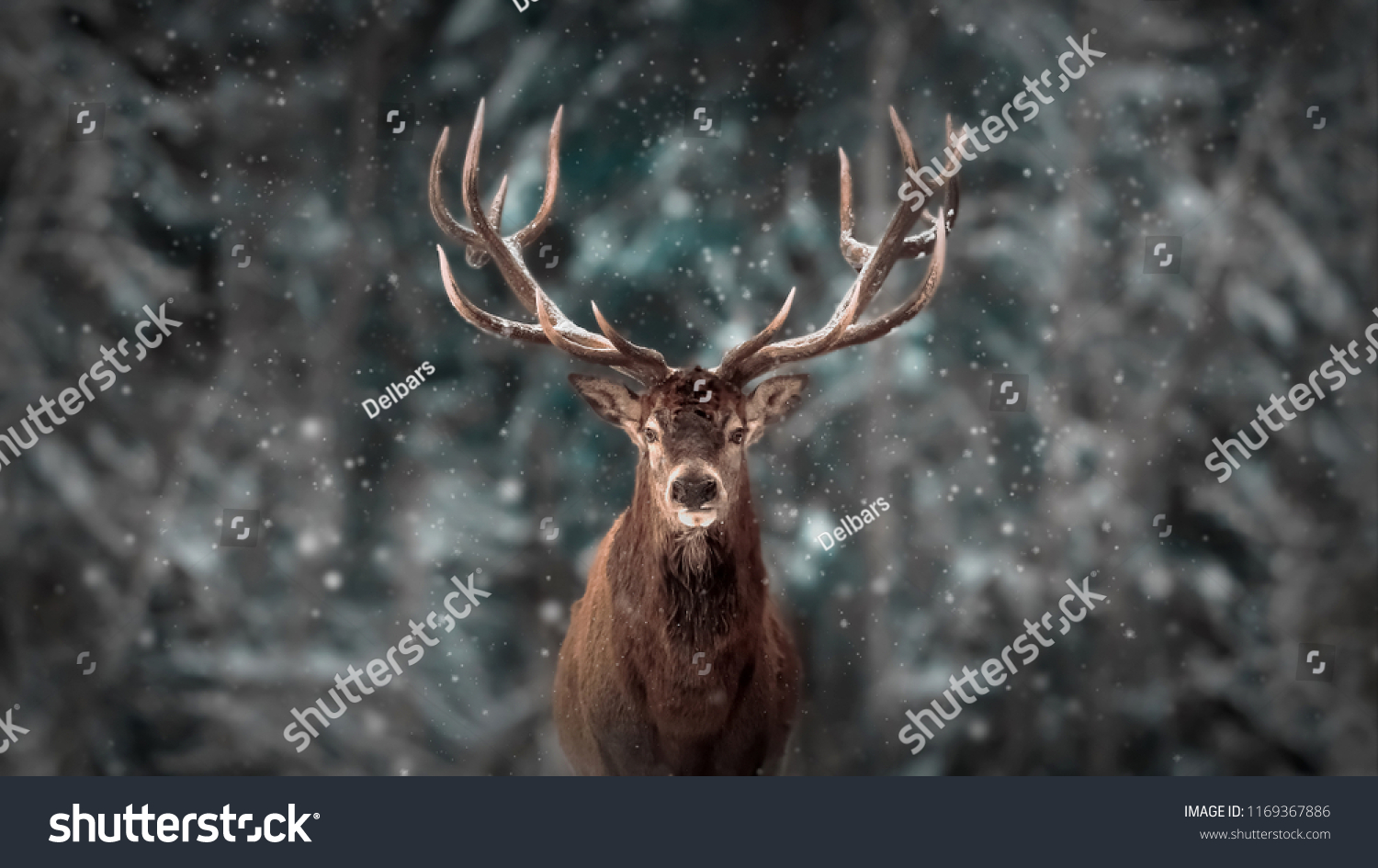 Noble deer male in winter snow forest. Artistic winter christmas landscape. #1169367886