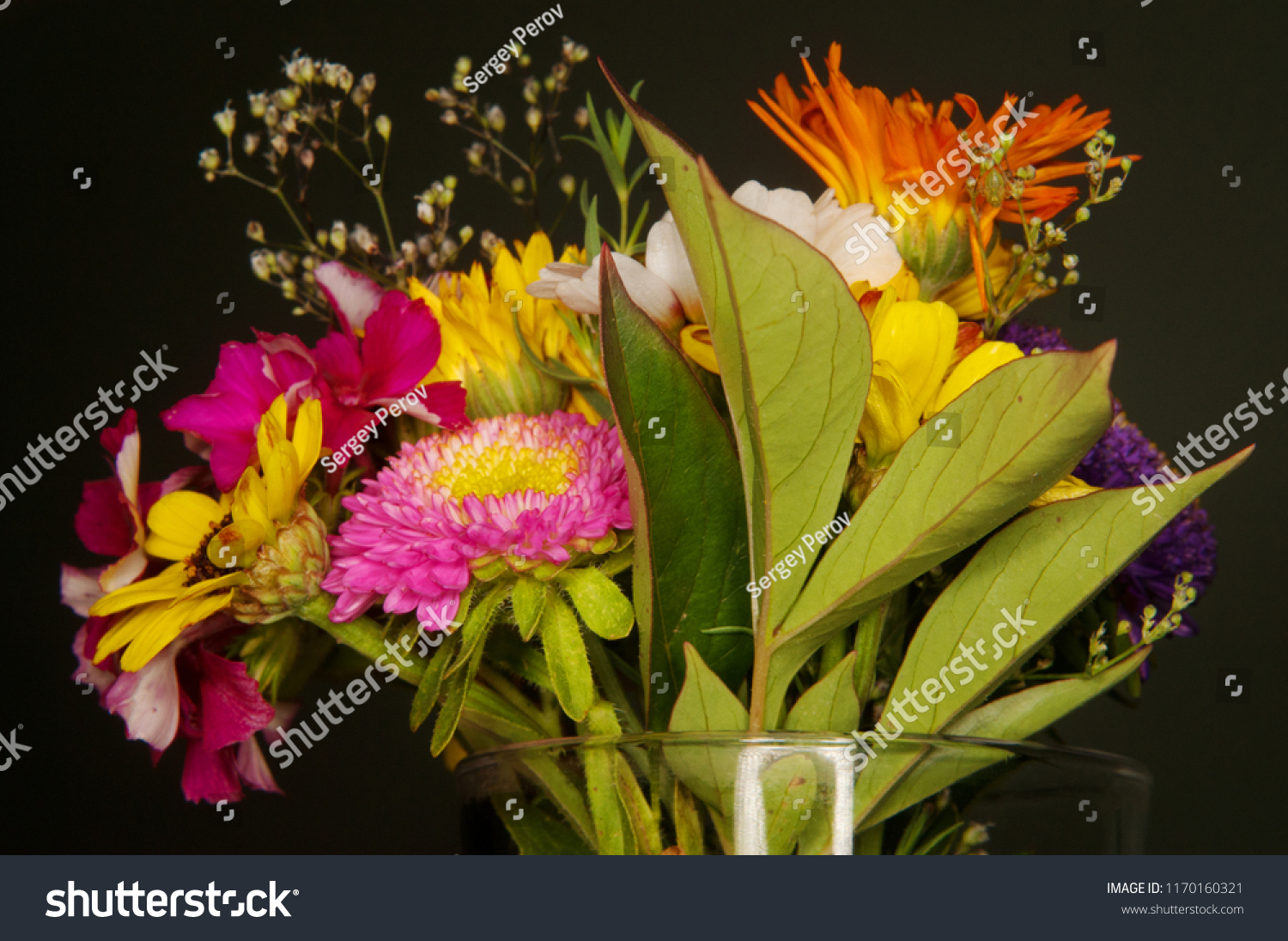 Close-up of a clear glass vase filled with wildflowers isolated on a black background #1170160321