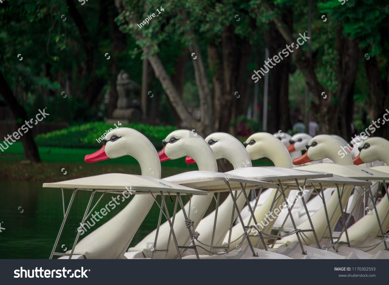 stock-photo-swan-pedal-boat-lumpini-park