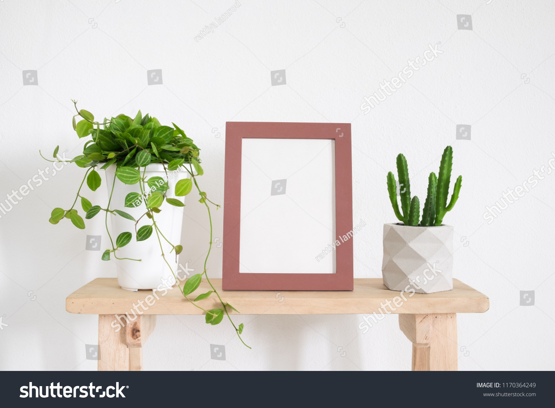 pink frame photo cactus ivy plant stock photo edit now 1170364249 rh shutterstock com