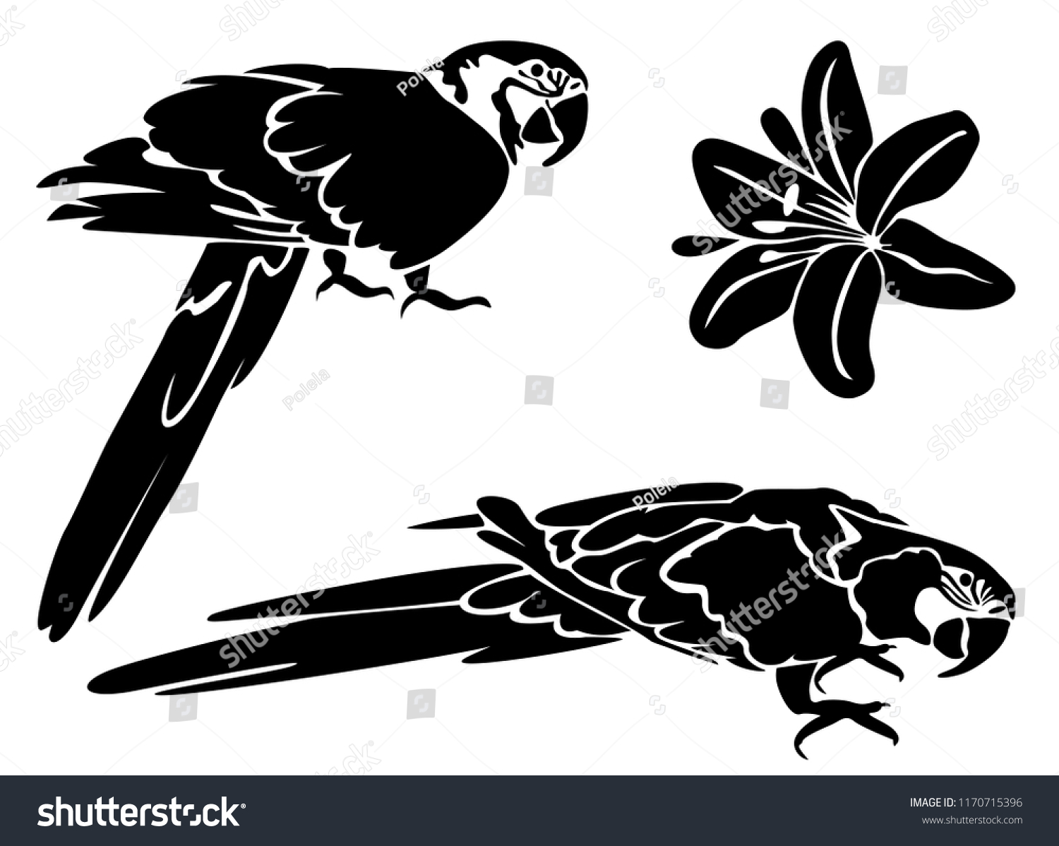 Stencil laser cutting set parrot macaw stock vector royalty free stencil for laser cutting set of parrot macaw and hibiscus flower vector tropical izmirmasajfo