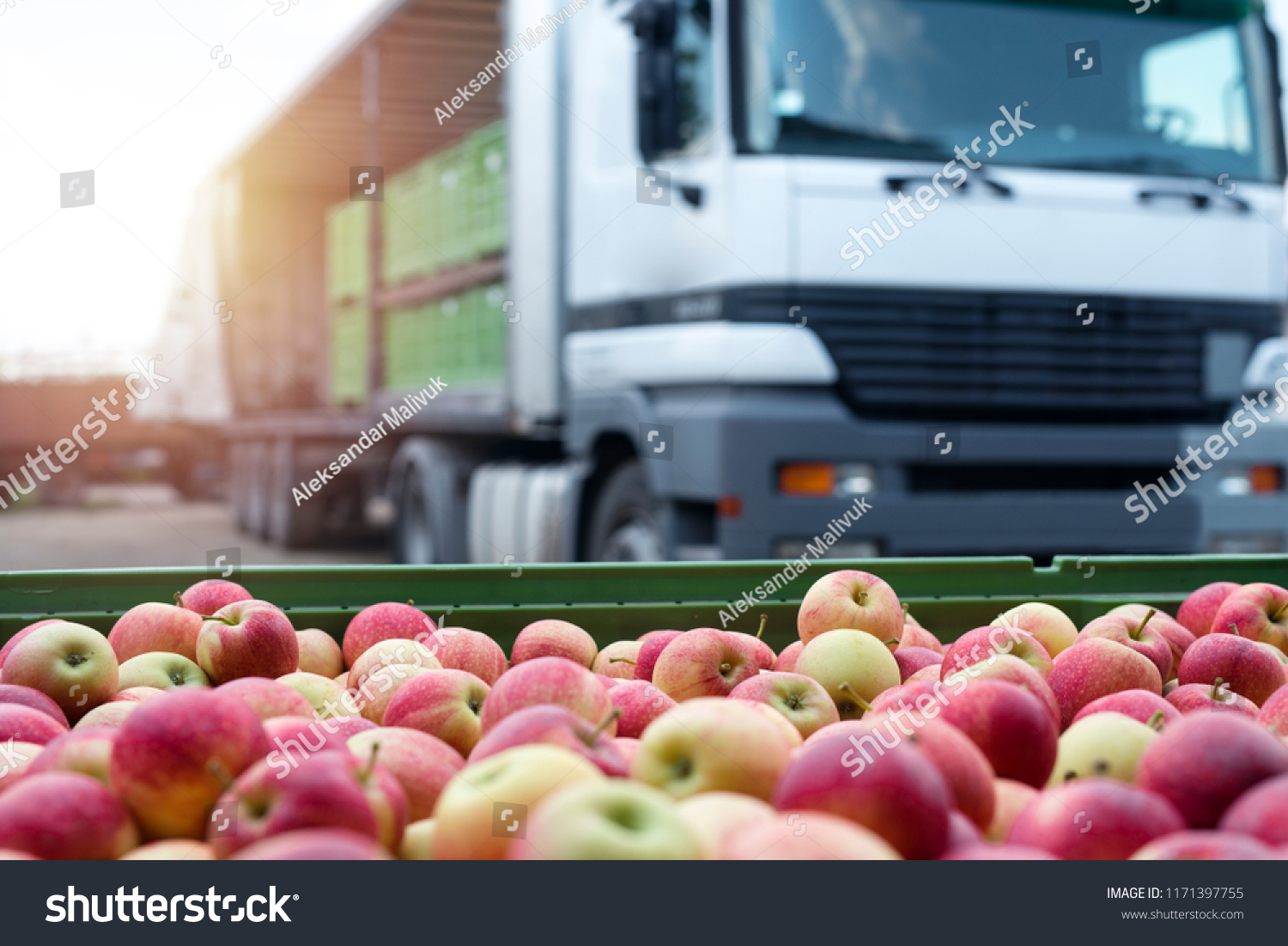Fruit and food distribution. Truck loaded with containers full of apples ready to be shipped to the market. #1171397755