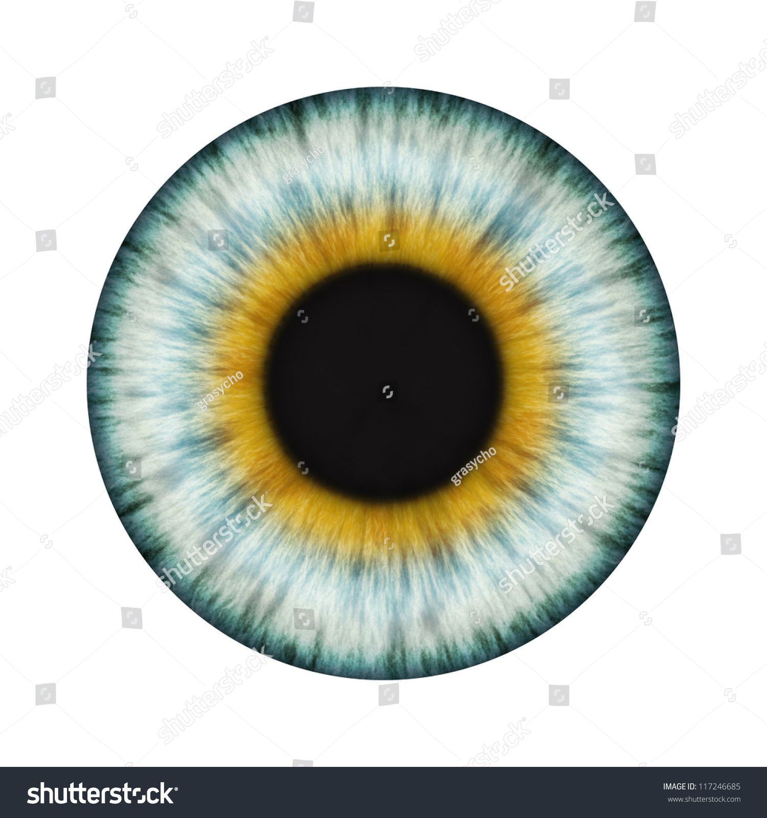 Detailed Realistic Eye Texture Stock Photo 117246685 ...