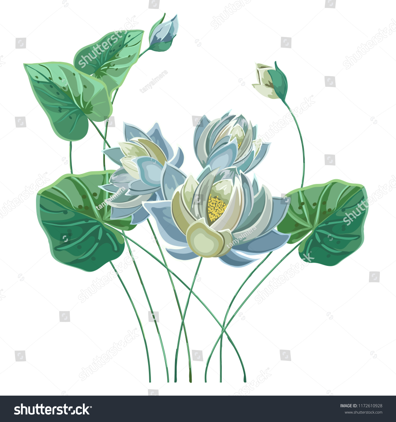 Composition blue lotus flower green leaves stock vector royalty composition of blue lotus flower with green leaves in hand drawn style pastel colorsalistic izmirmasajfo
