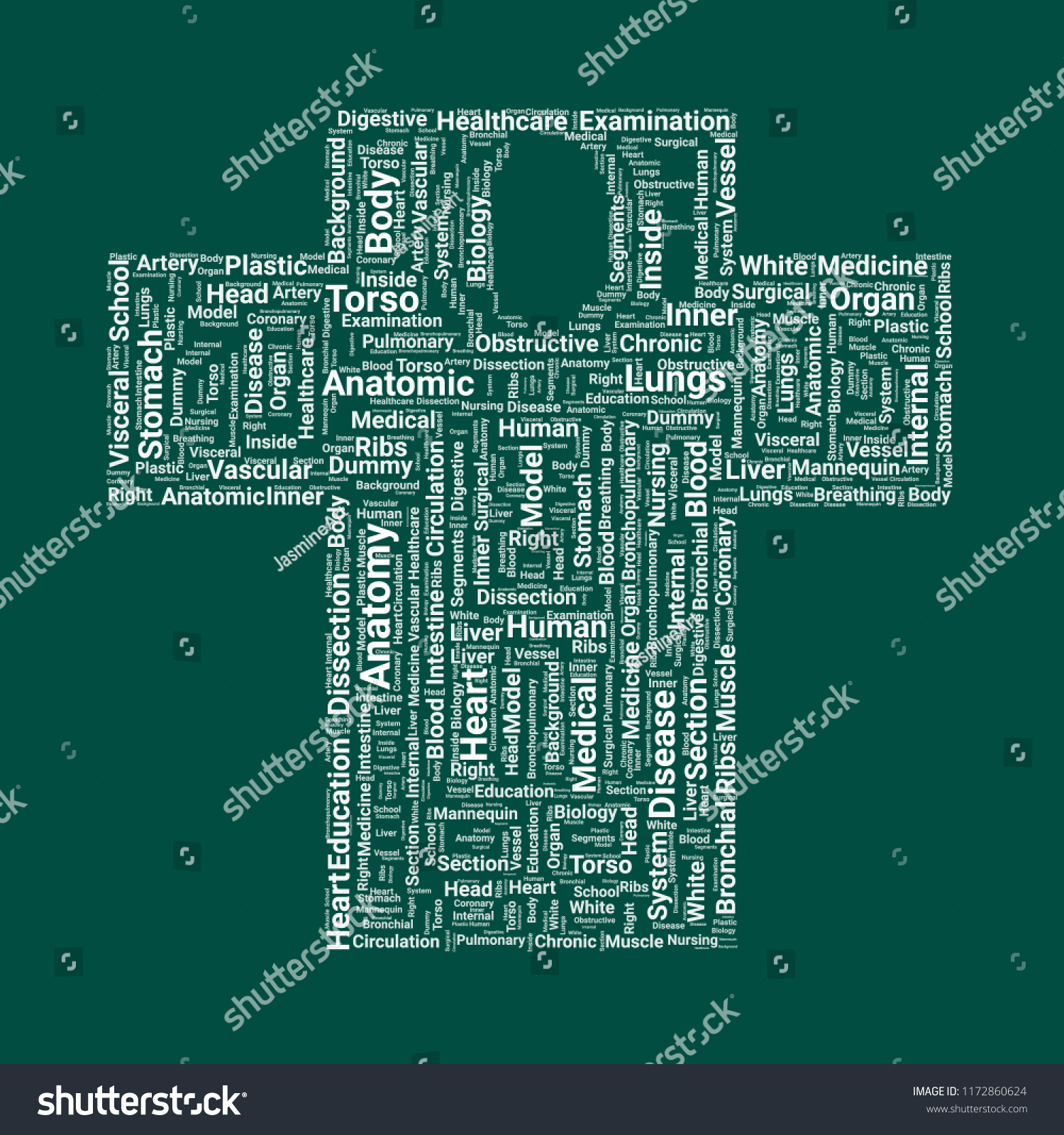 Human Dissection Word Cloud Word Cloud Stock Vector Royalty Free
