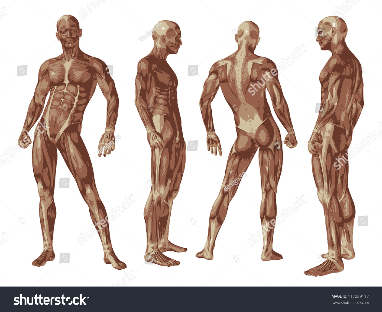High Resolution Concept Conceptual Human Man Stock Illustration