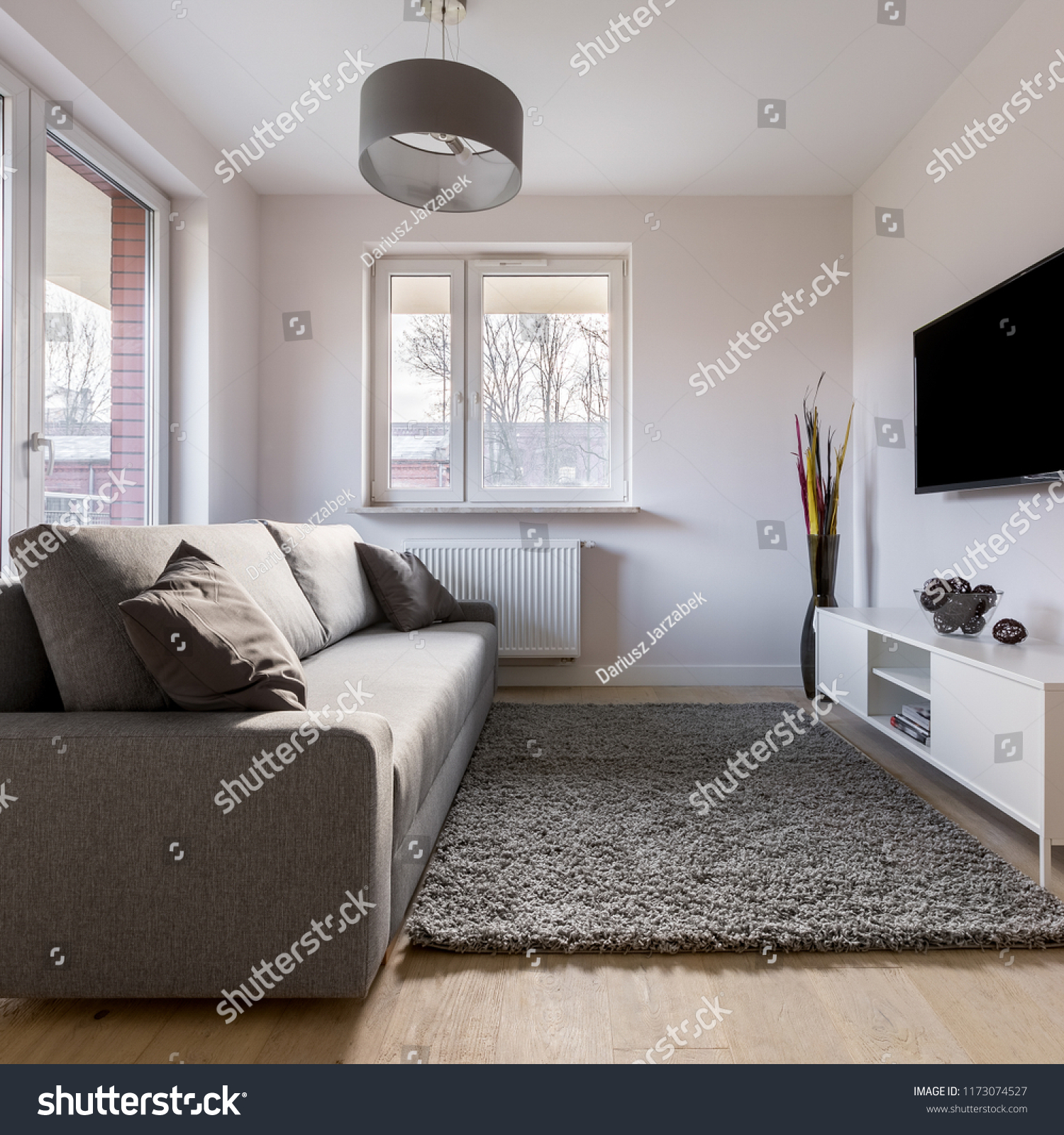 Small Living Room Sofa Carpet Tv Stock Photo Edit Now 1173074527