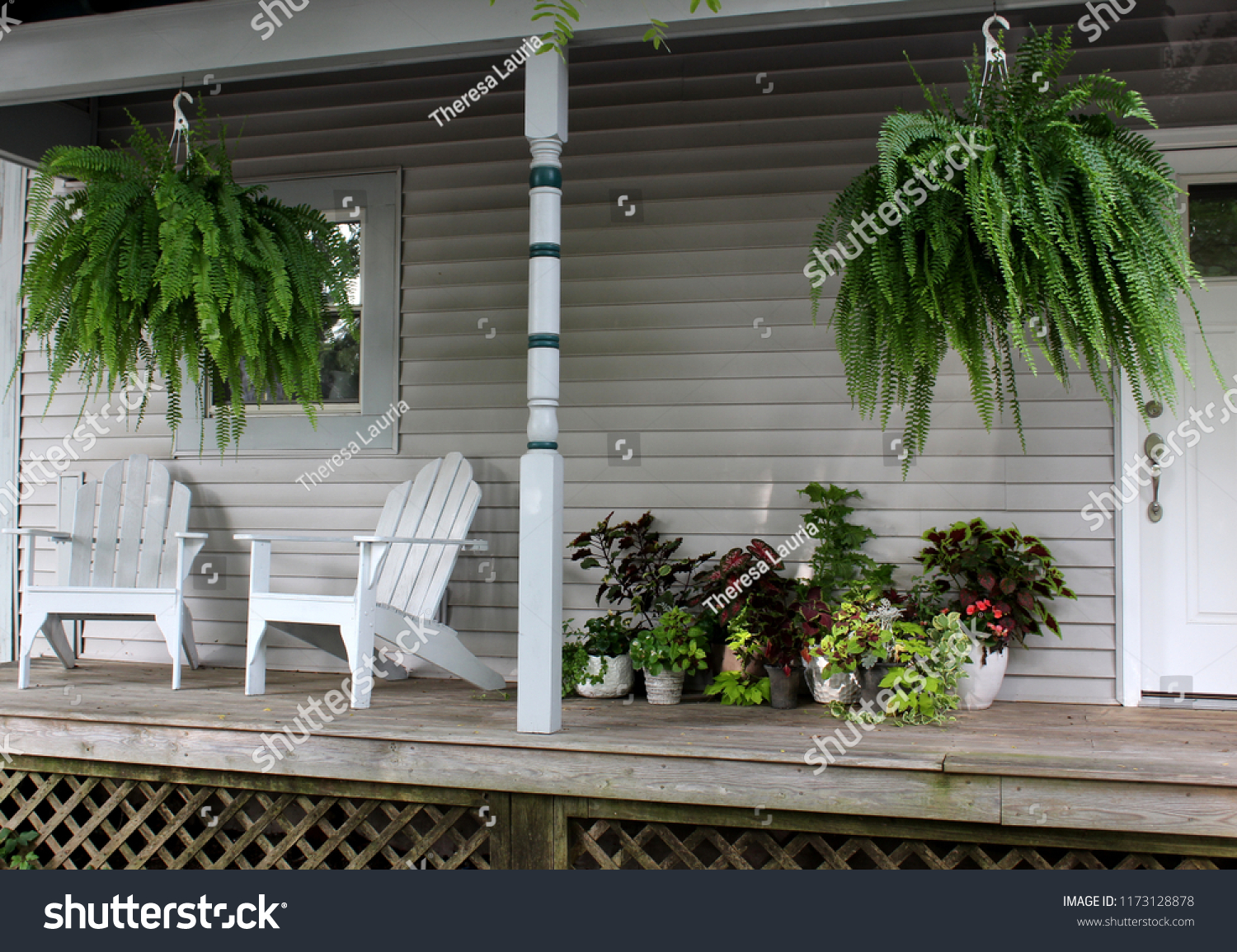 Warm and welcoming southern front porch with potted plants hanging ferns and two adirondack