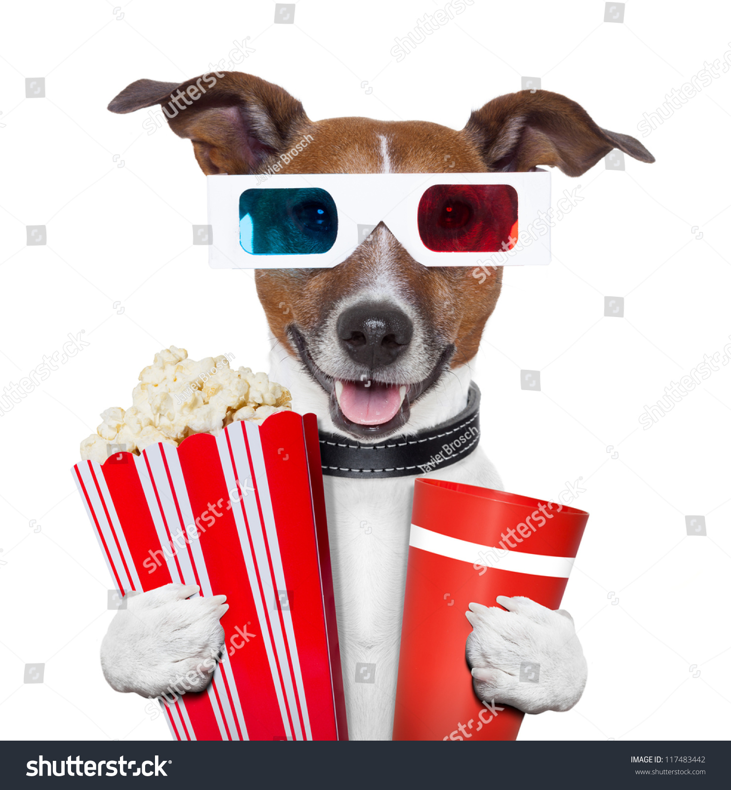 stock-photo--d-glasses-movie-popcorn-dog-watching-a-film-117483442.jpg