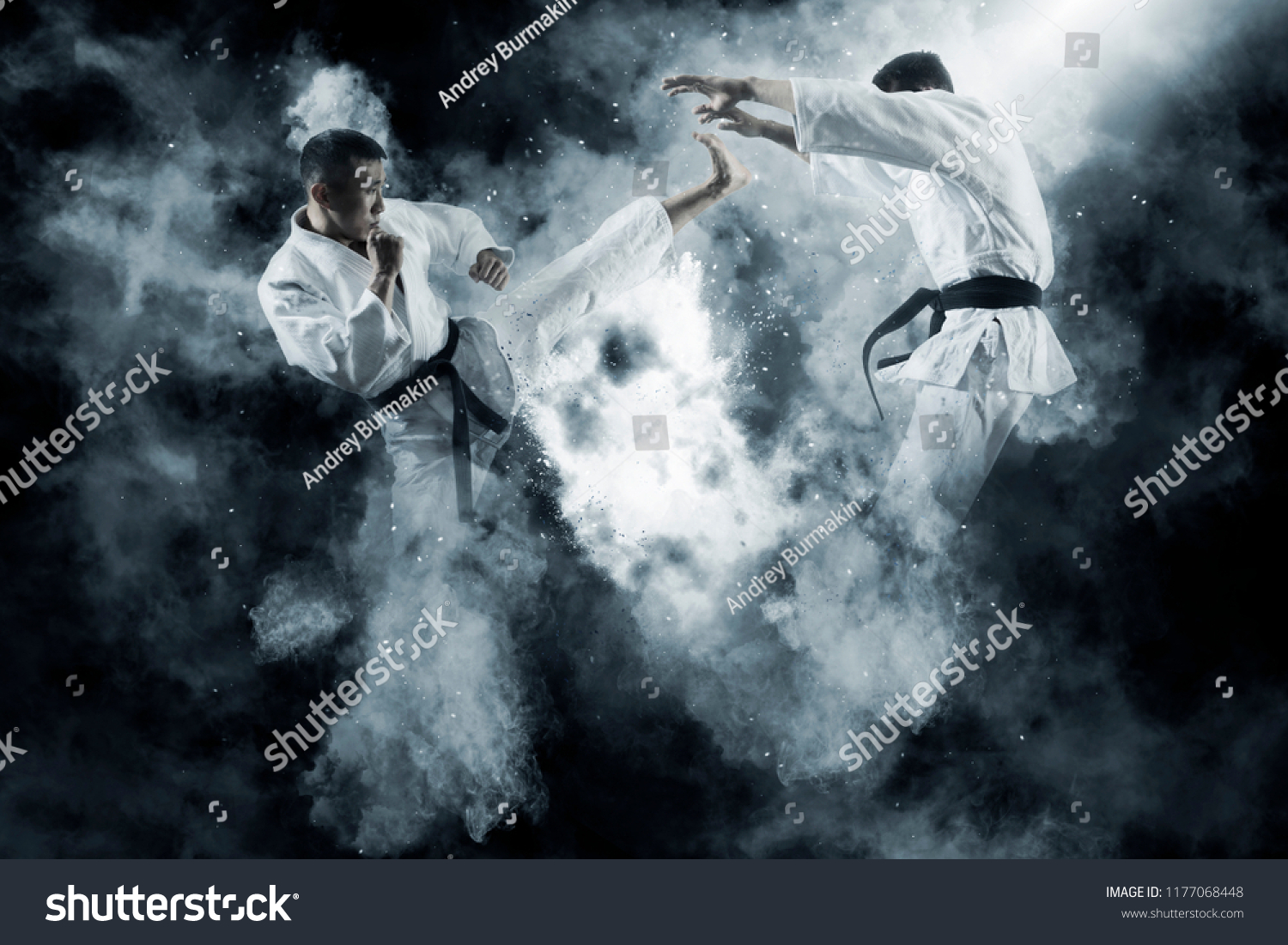 Martial arts masters, karate practice. Two male karate fighting  #1177068448