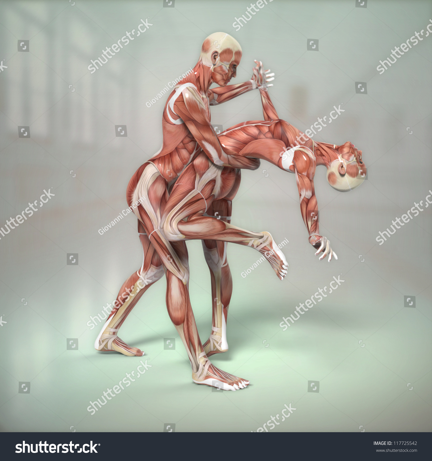 Anatomy Couple Dancing Stock Illustration 117725542 - Shutterstock
