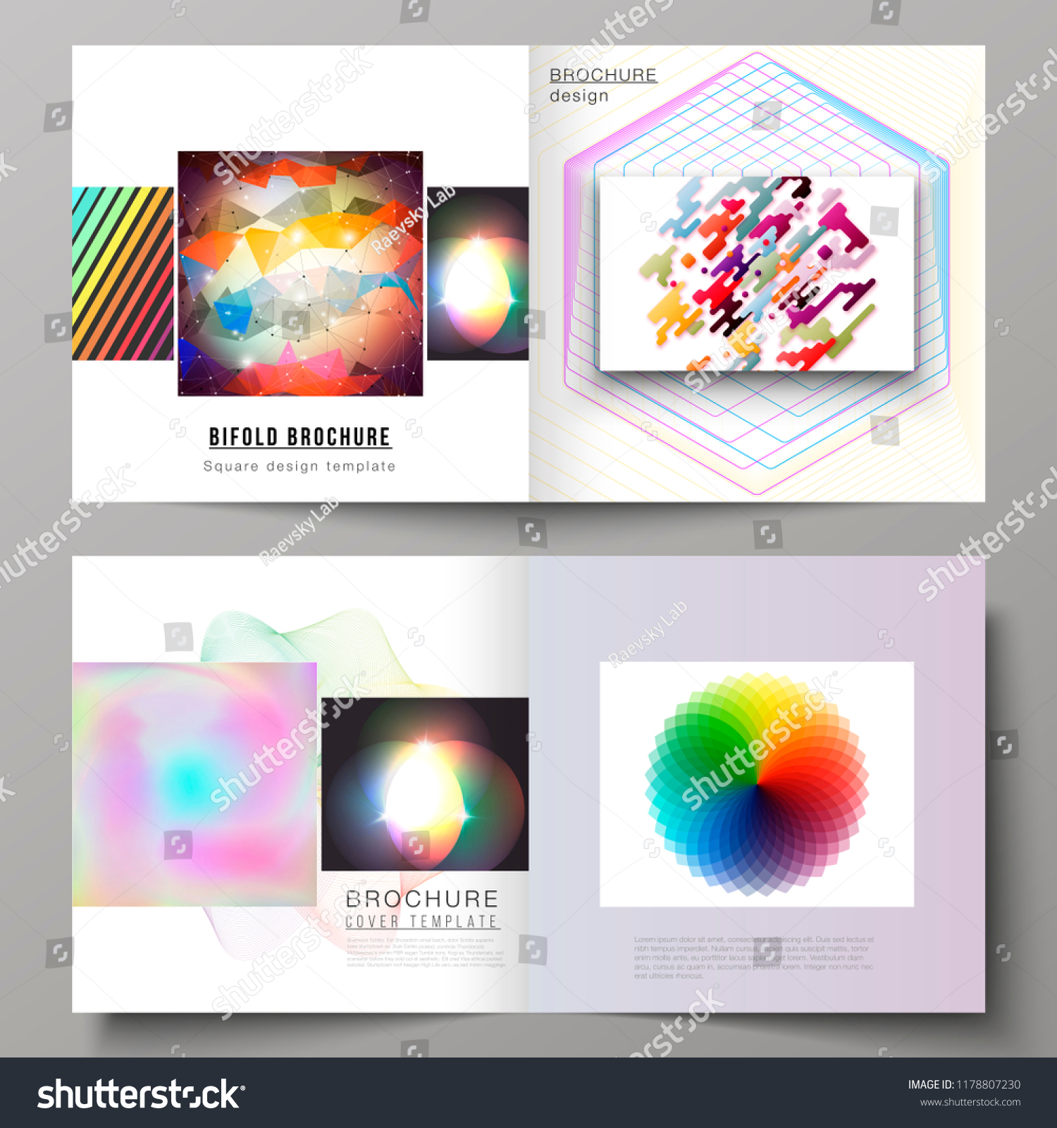 vector illustration layout two covers templates stock vector