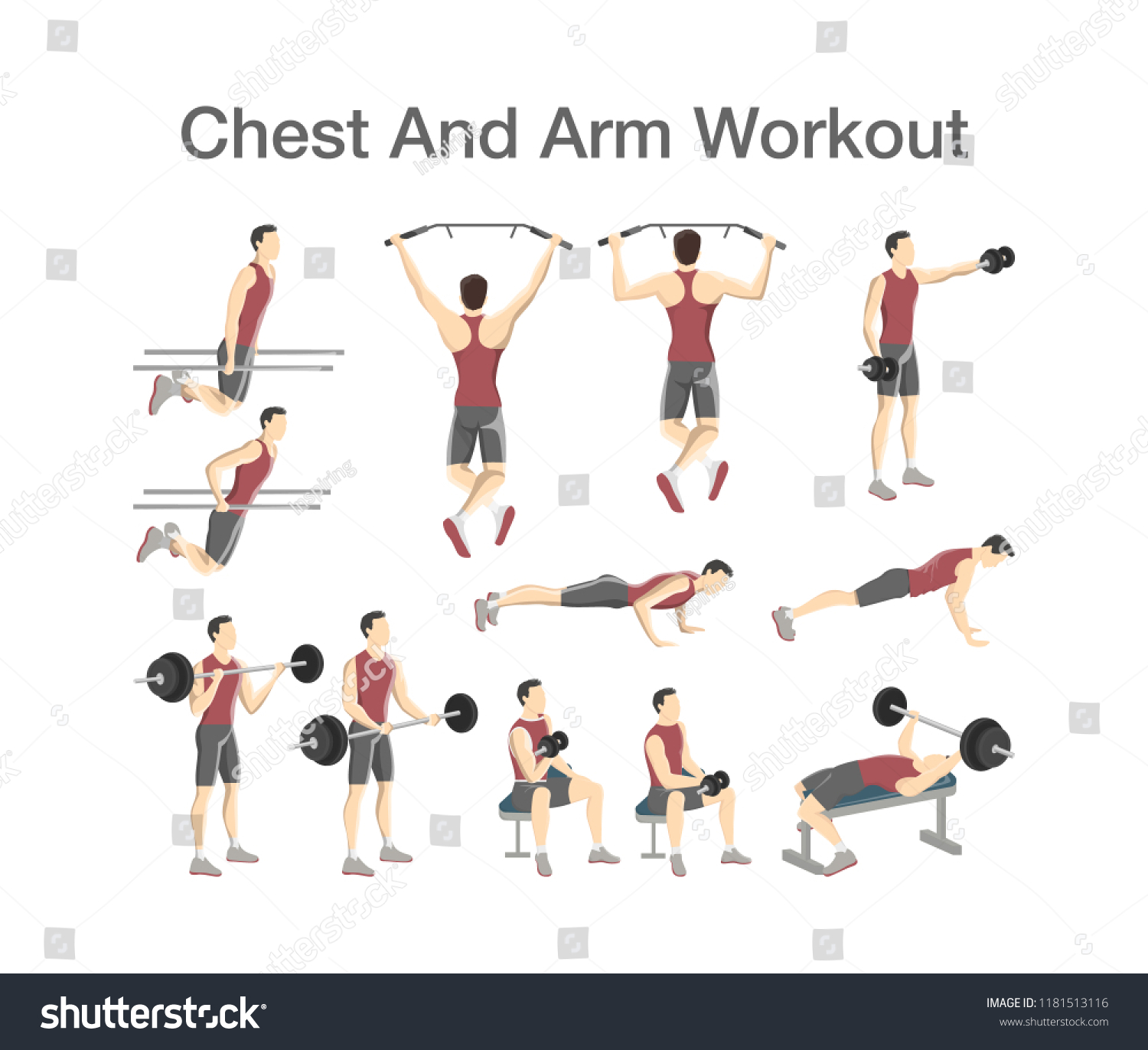 Arm And Chest Workout For Men With Dumbbell Barbell Sport Exercise Muscle Building