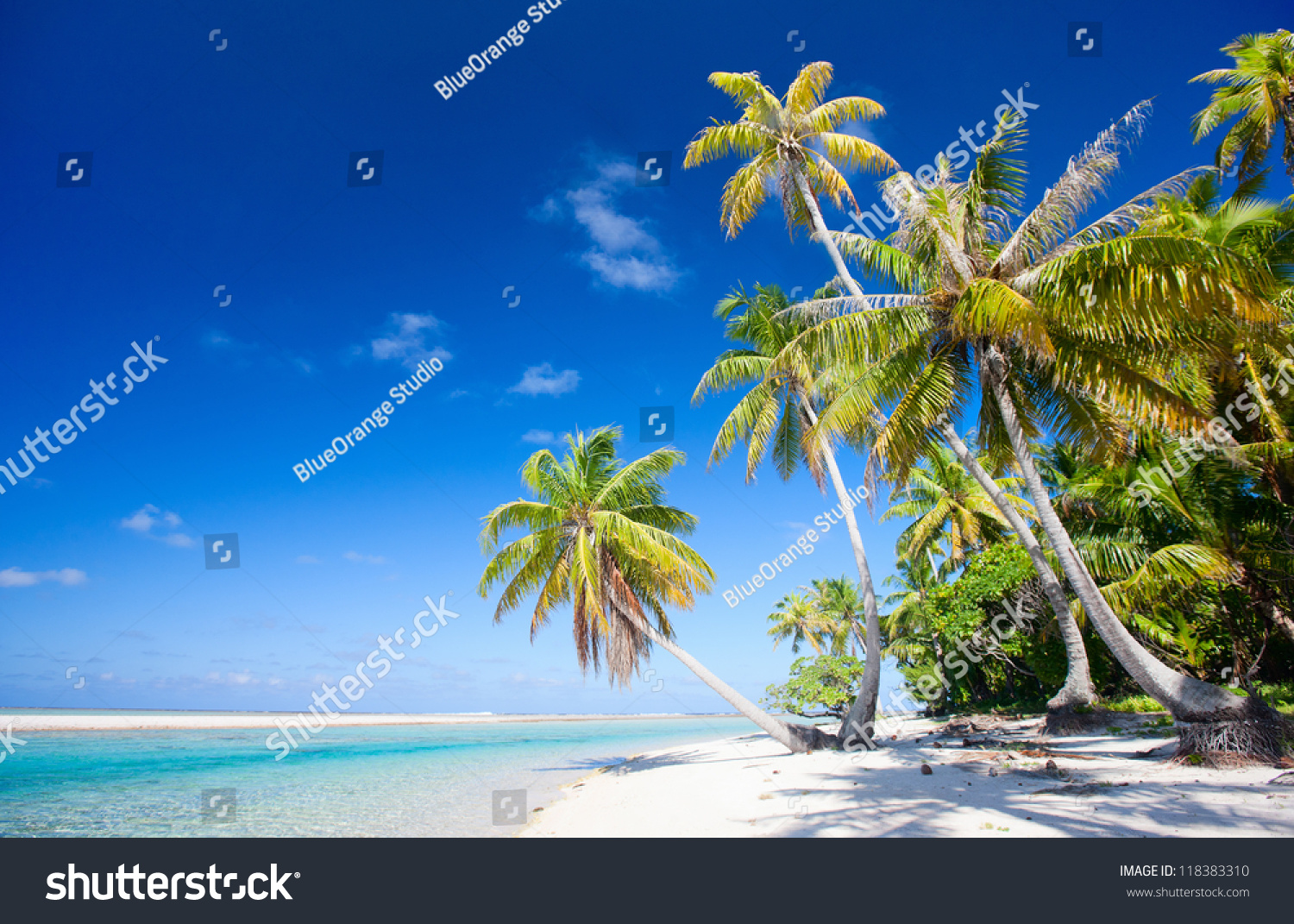 Tikehau Atoll French Polynesia  City new picture : Beautiful Beach At Tikehau Atoll In French Polynesia Stock Photo ...