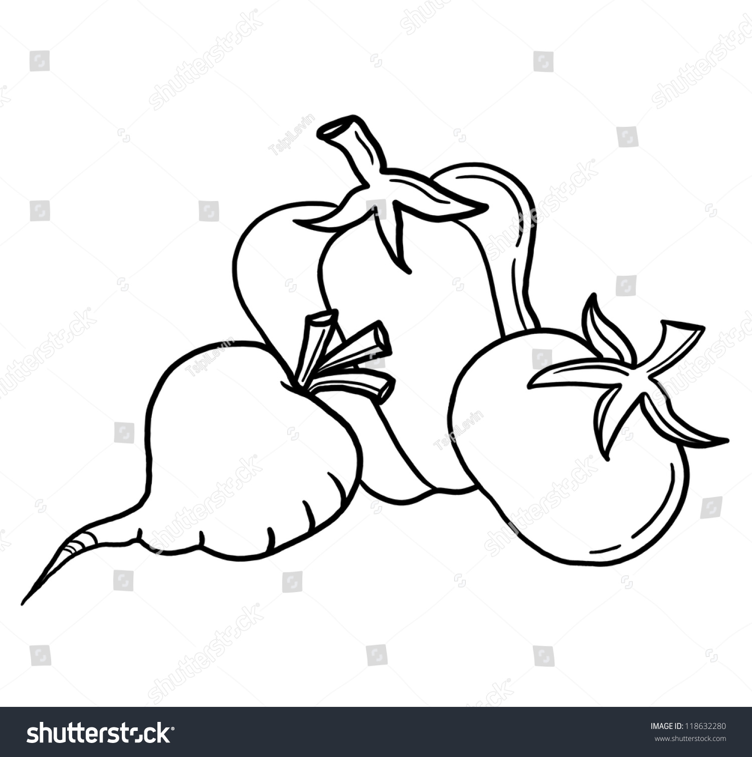 Line Drawing Zucchini : Vegetables outline illustration vegetable collection