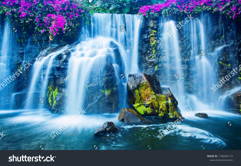 Nice Nature Wallpaper Stock Photo (Edit Now) 1186682119