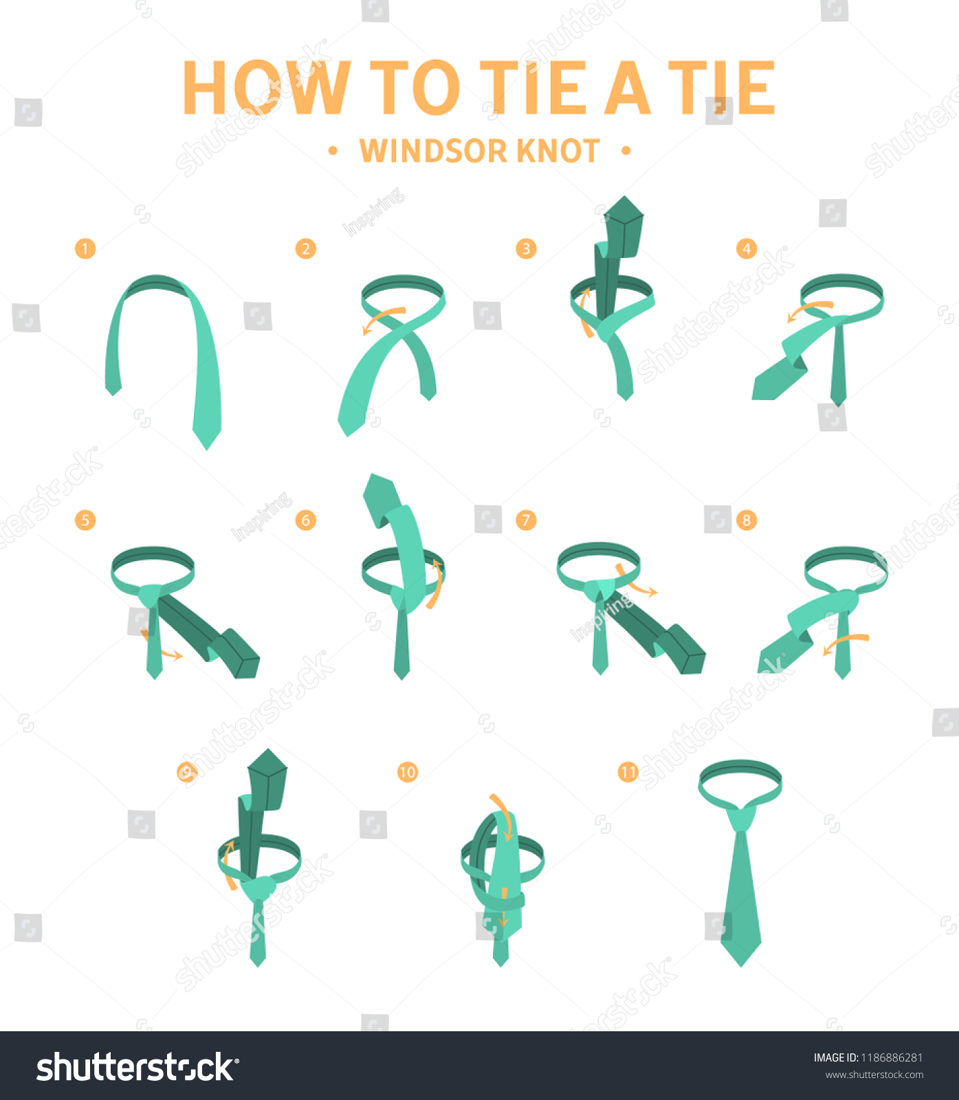How Tie Windsor Knot Instruction Stock Vector Royalty Free To A Tying Guide For Making Necktie Elegant Formal
