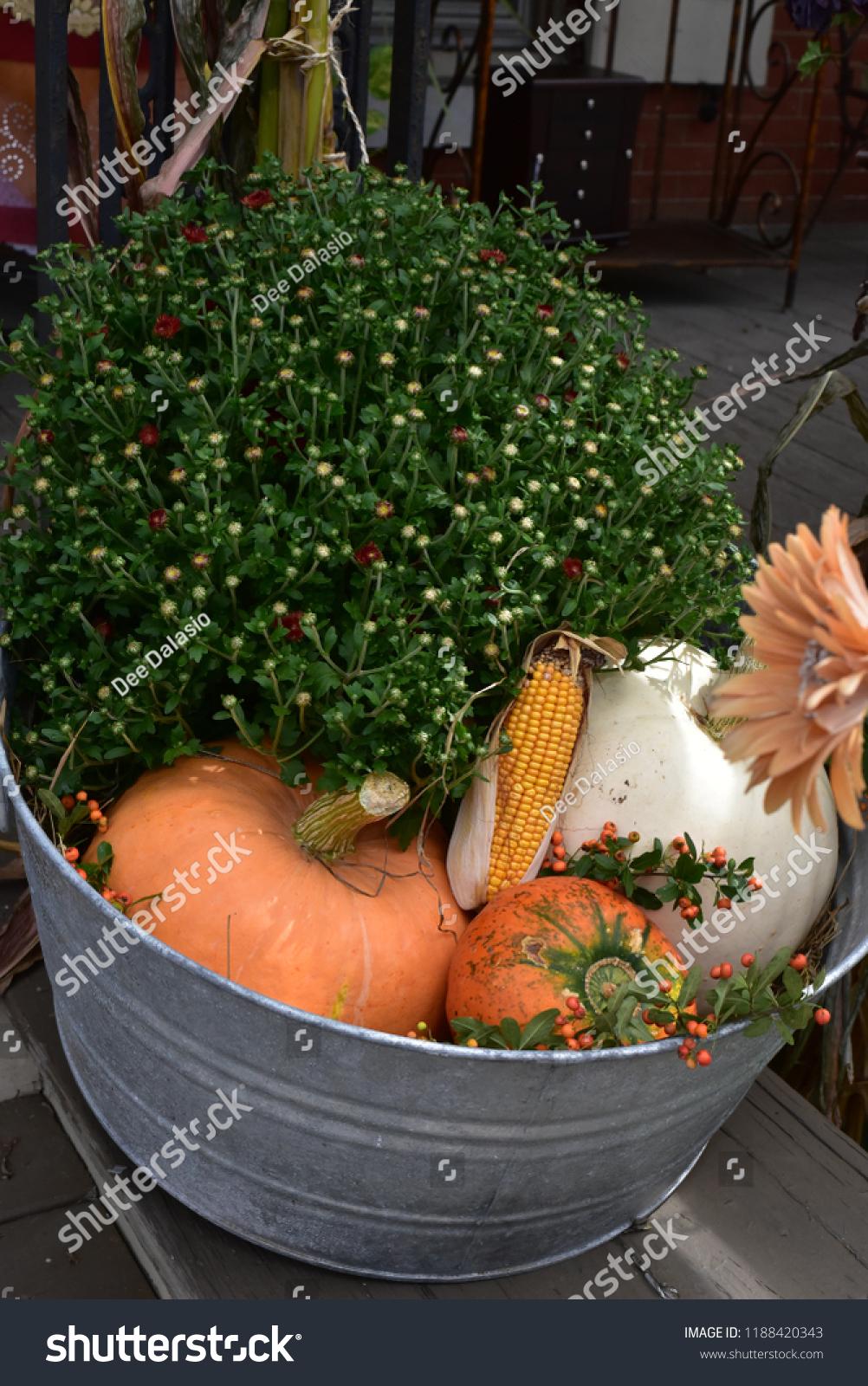 Fall Decoration Metal Bucket Arrangement Budding Stock Photo Edit Now 1188420343