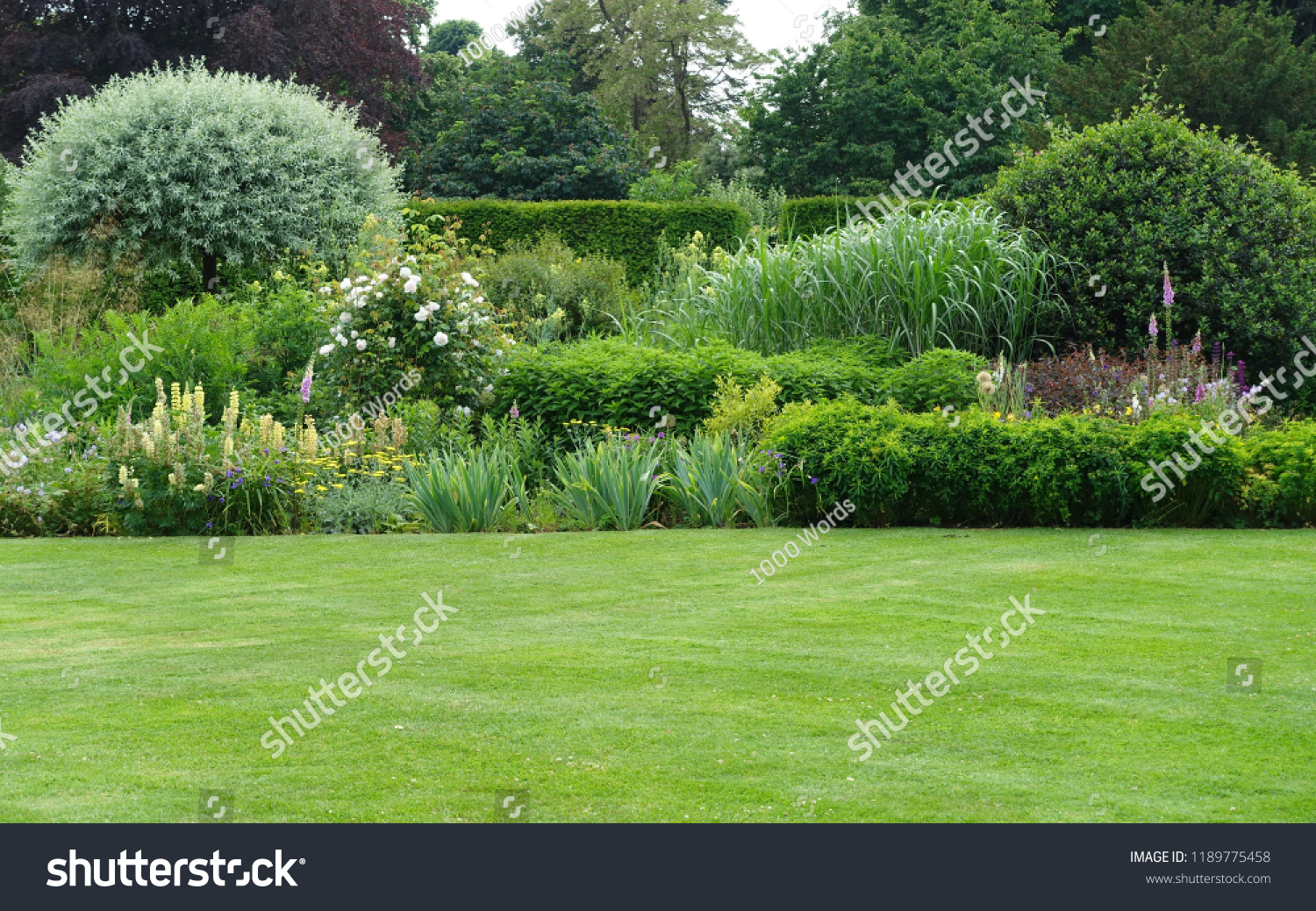 Scenic View of a Beautiful English Style Landscape Garden with a Green Mowed Lawn and Colourful Flower Bed