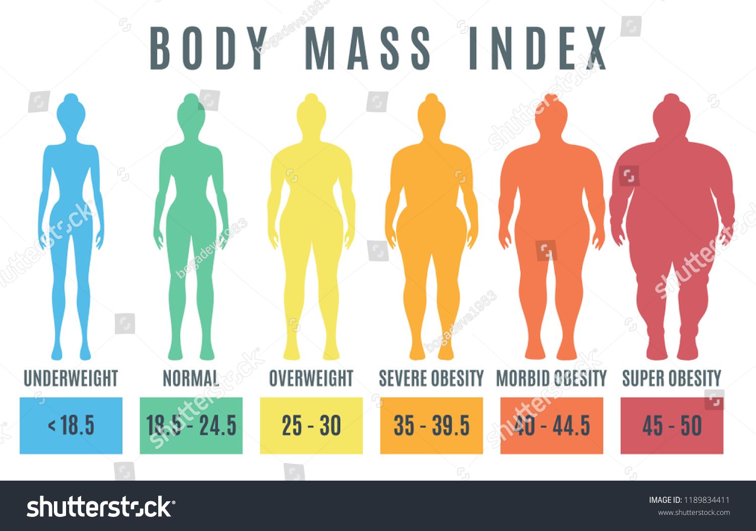 female body mass index underweight super stock vector royalty free