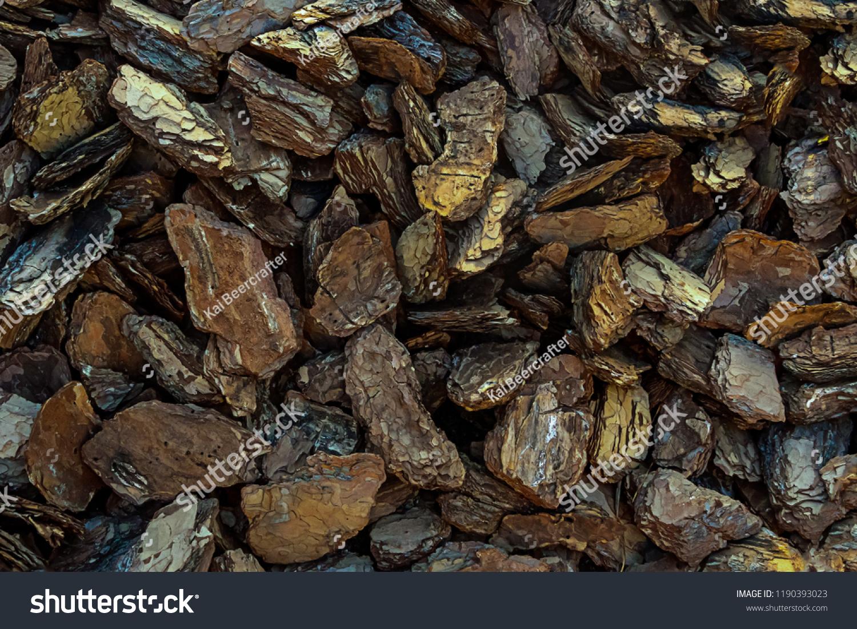 Dark Brown Bark Oak Eco Background Stock Photo (Edit Now