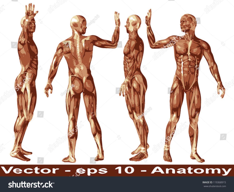 Vector Concept Conceptual Human Man 3 D Stock Vector 119368915 ...