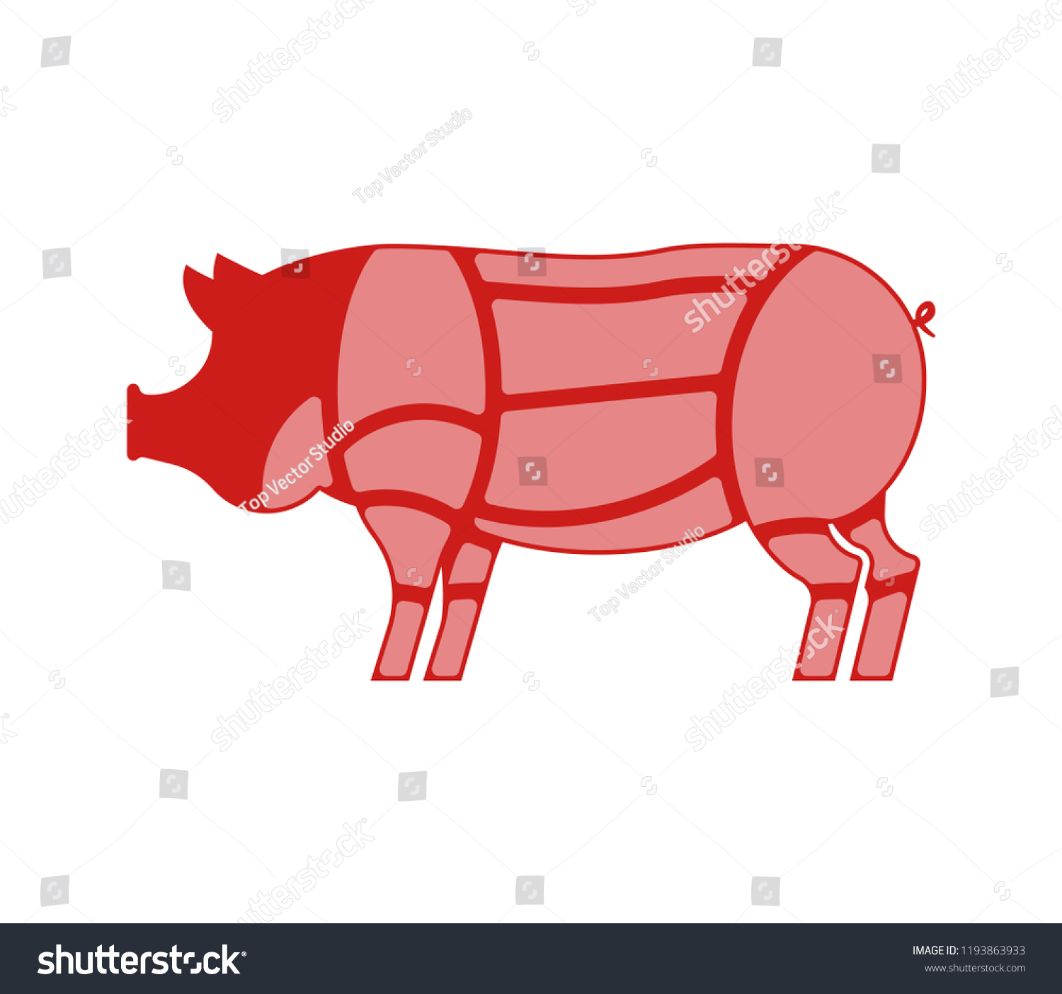 Pig Cuts Pigs Cut Meat Set Stock Vector Royalty Free 1193863933 Diagram Of Scheme Pork Animal Silhouette Farm