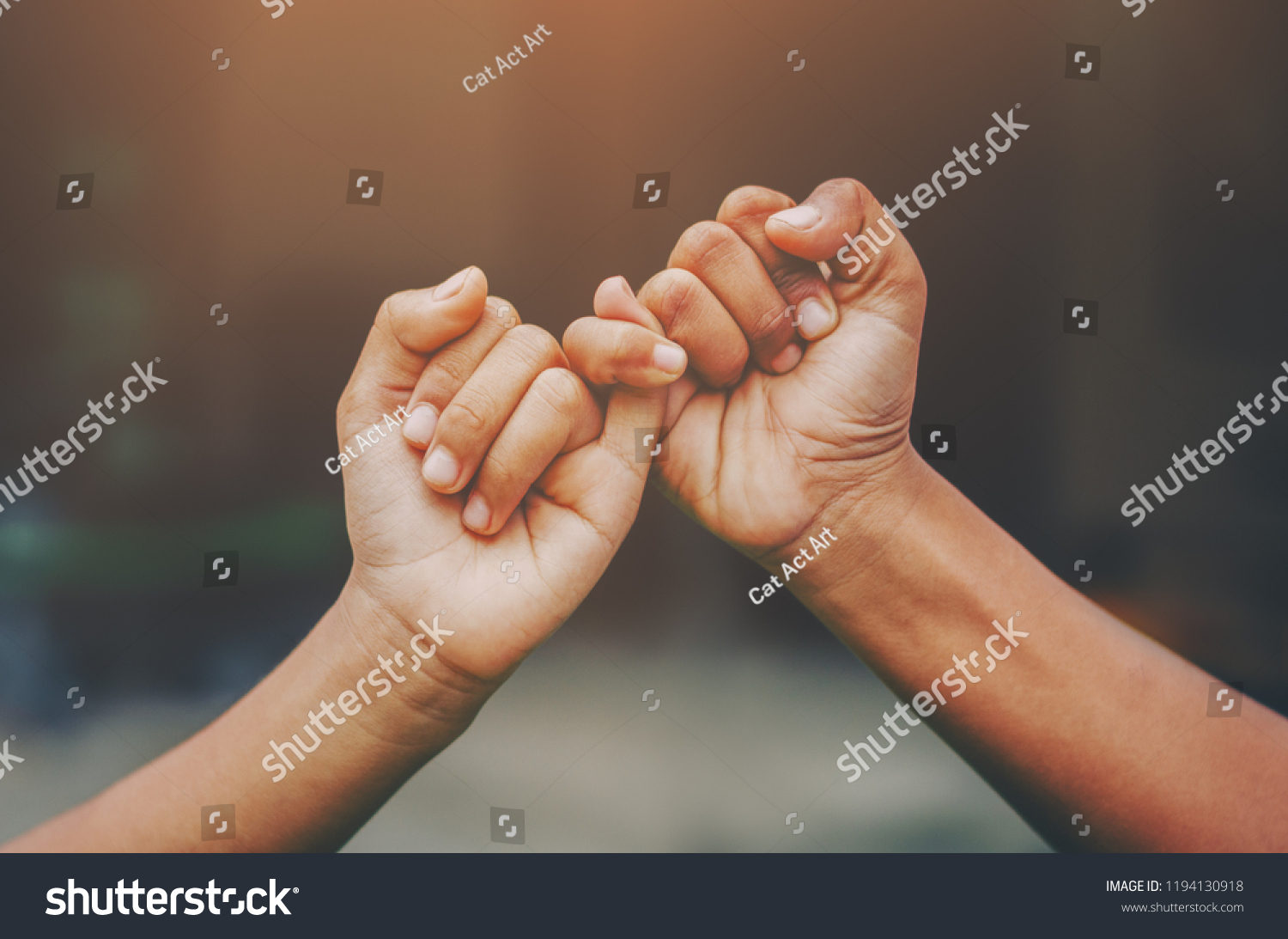 Hand to pinky swear,Happy couple or friendship holding hands together forever love concept. #1194130918
