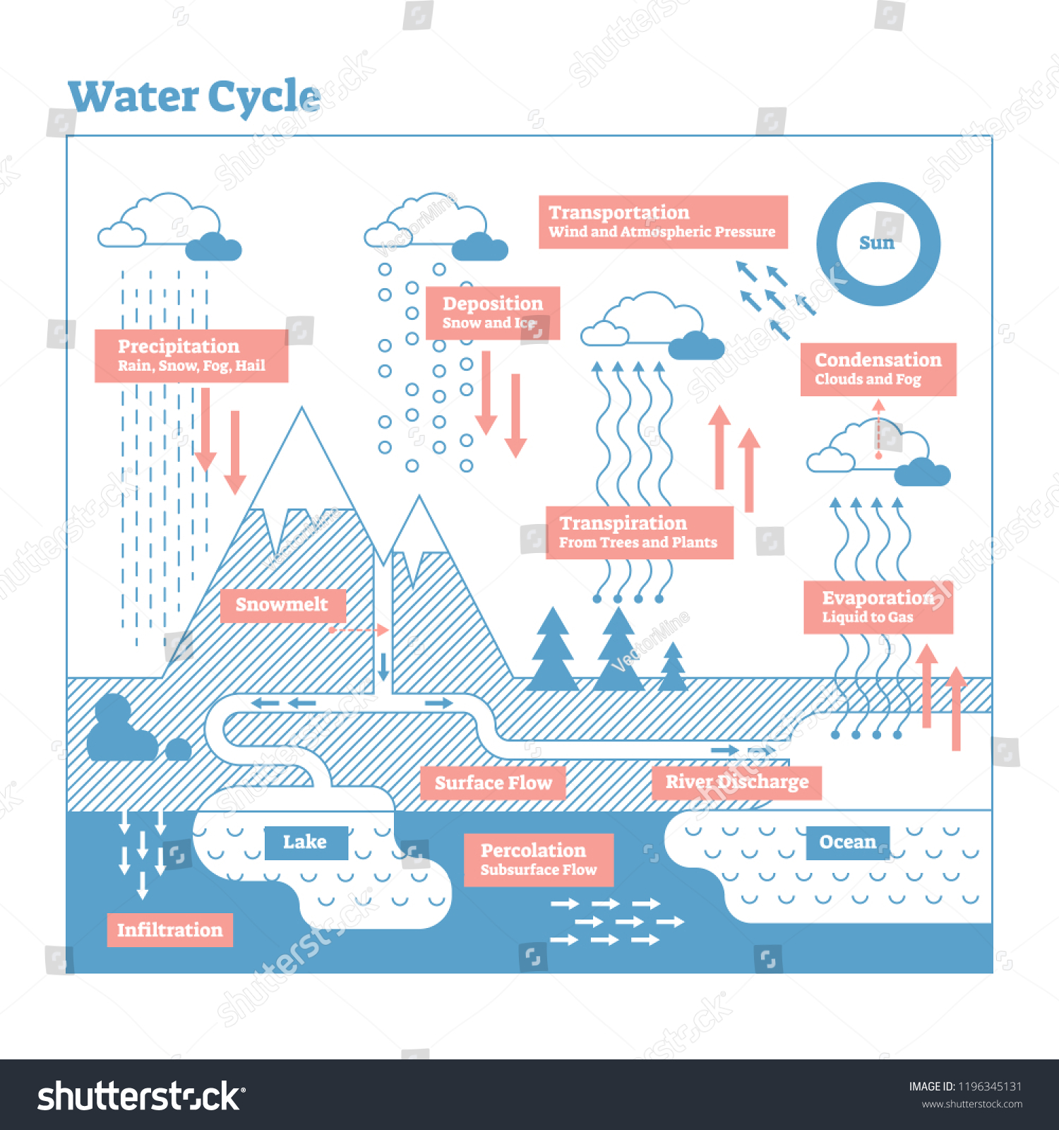 water cycle vector illustration diagram evaporation stock vector