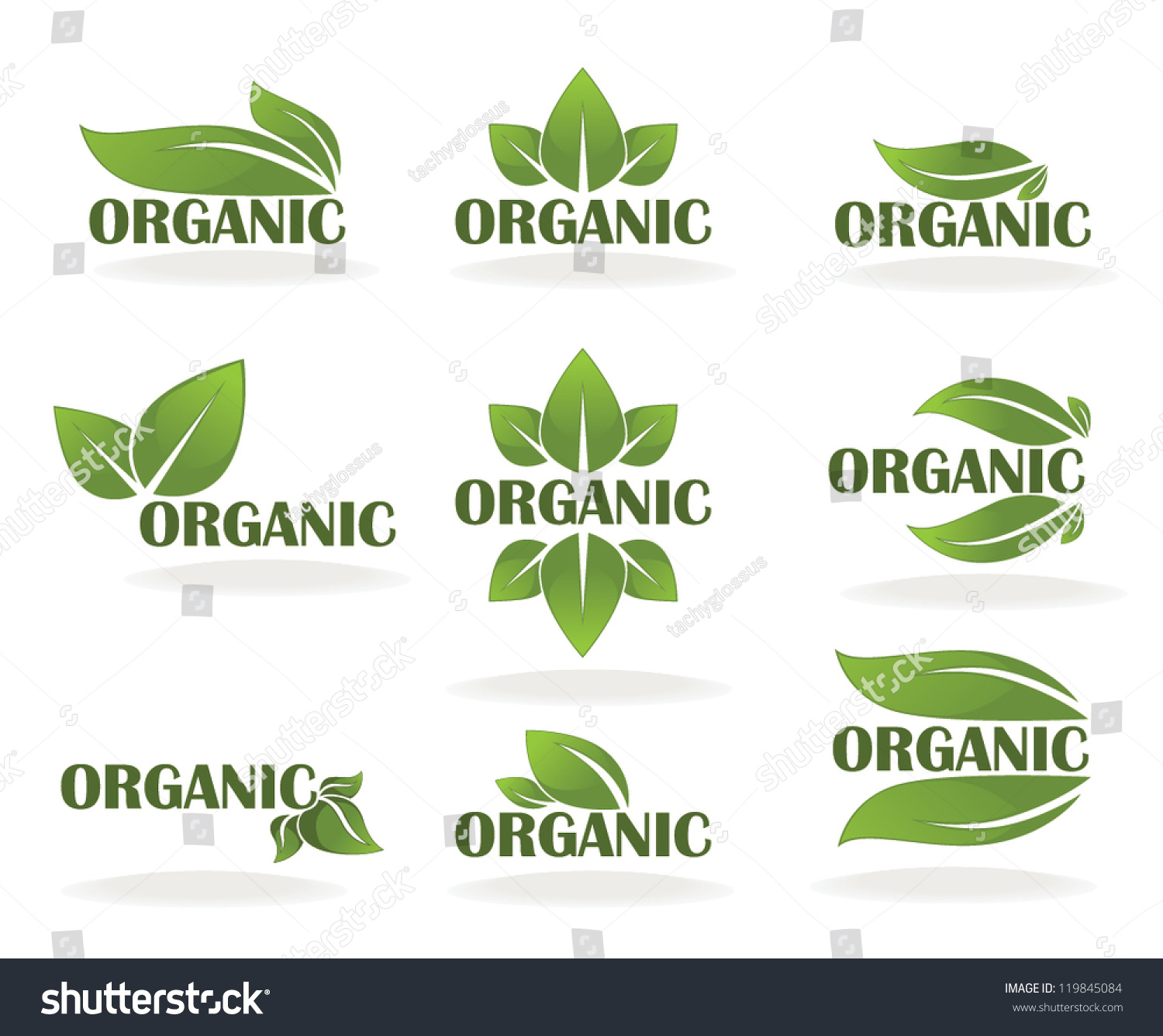 Vector Collection Leaf Signs Symbols Organic Stock Vector ...