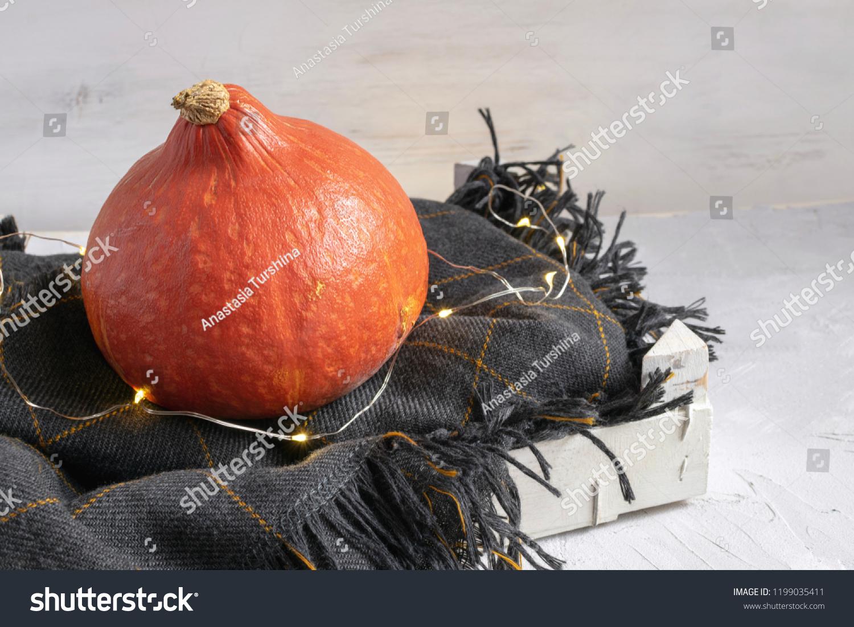 Autumn Concept Pumpkin Garland Lights On Stock Photo Edit Now 1199035411
