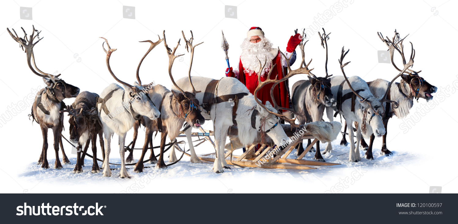 Santa claus near his deer harness stock photo