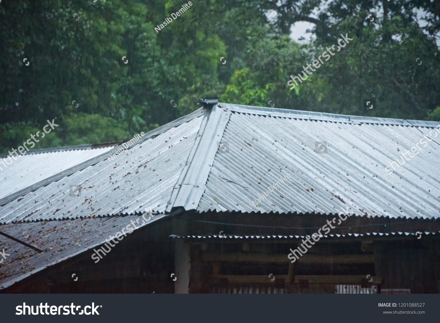 Traditional Tin Shed House Rain Isolated Parks Outdoor Stock Image 1201088527