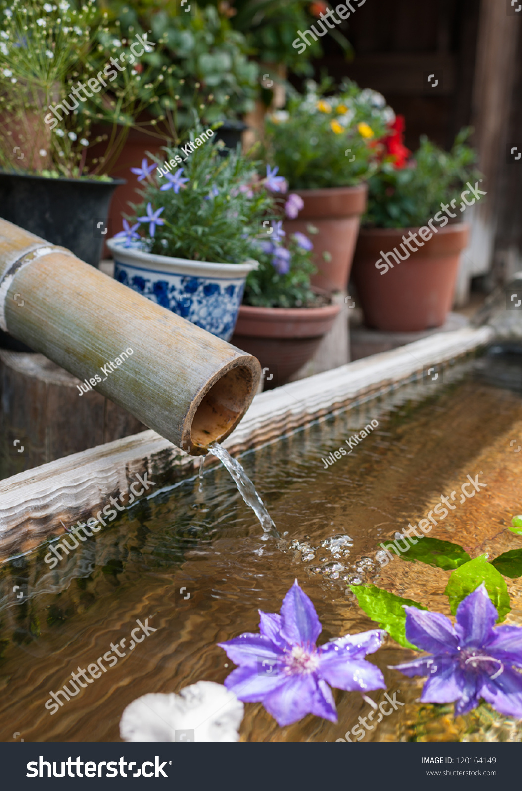 Traditional bamboo fountain lotus flower decoration stock photo traditional bamboo fountain with lotus flower decoration izmirmasajfo