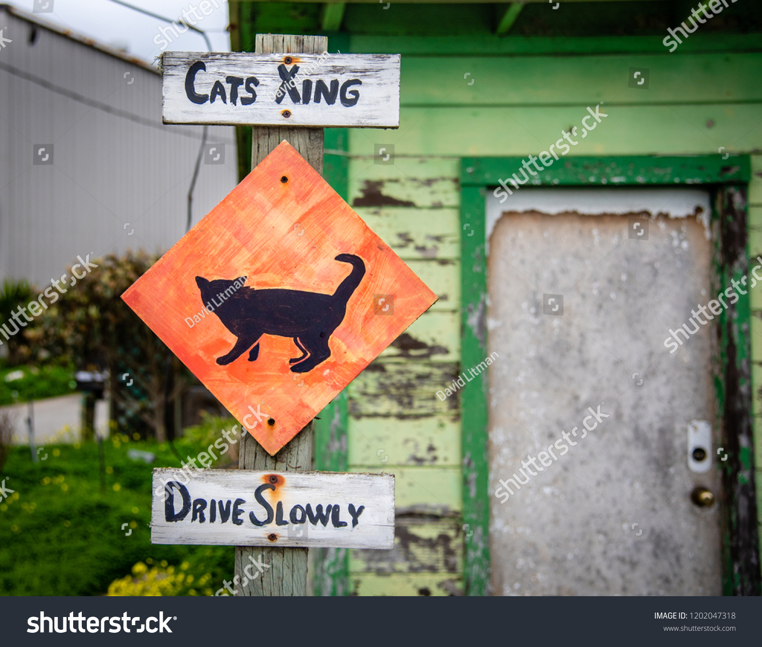 A cat crossing (xing) street sign cautions drivers to drive slowly to avoid collisions with cats.