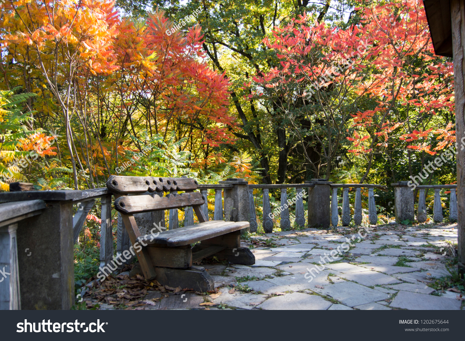 Rusty Bench Autumn Park Deep Forest Stock Photo Edit Now