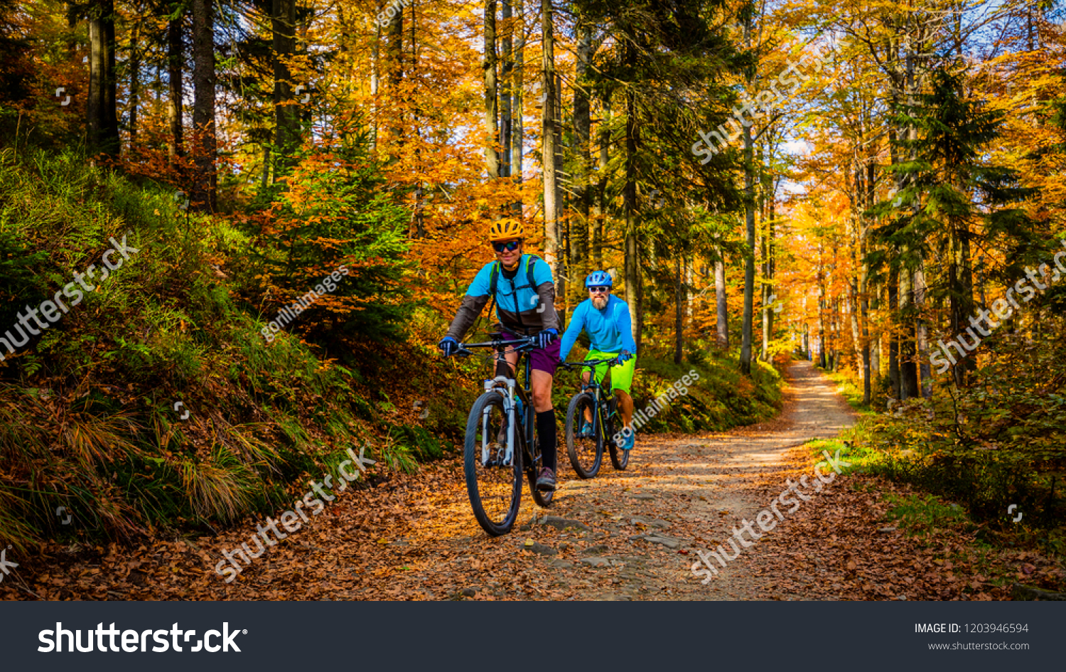 Cycling, mountain biker couple on cycle trail in autumn forest. Mountain biking in autumn landscape forest. Man and woman cycling MTB flow uphill trail. #1203946594