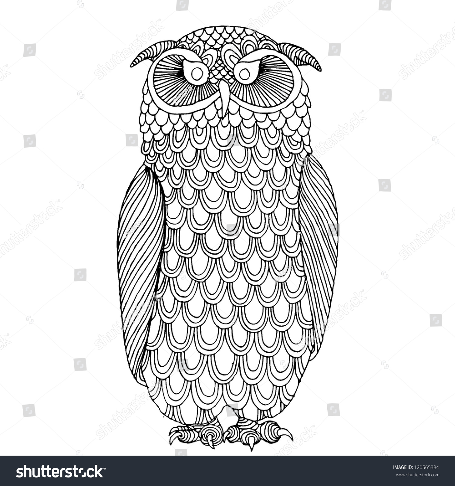 funny owl drawing - photo #25