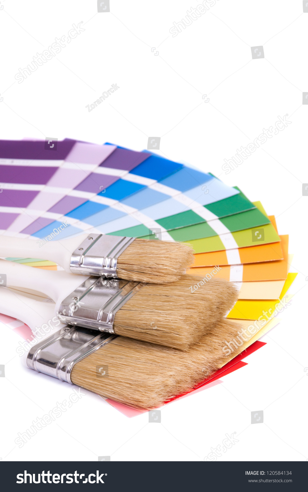 Color Palette Brush Isolated On White Stock Photo ...