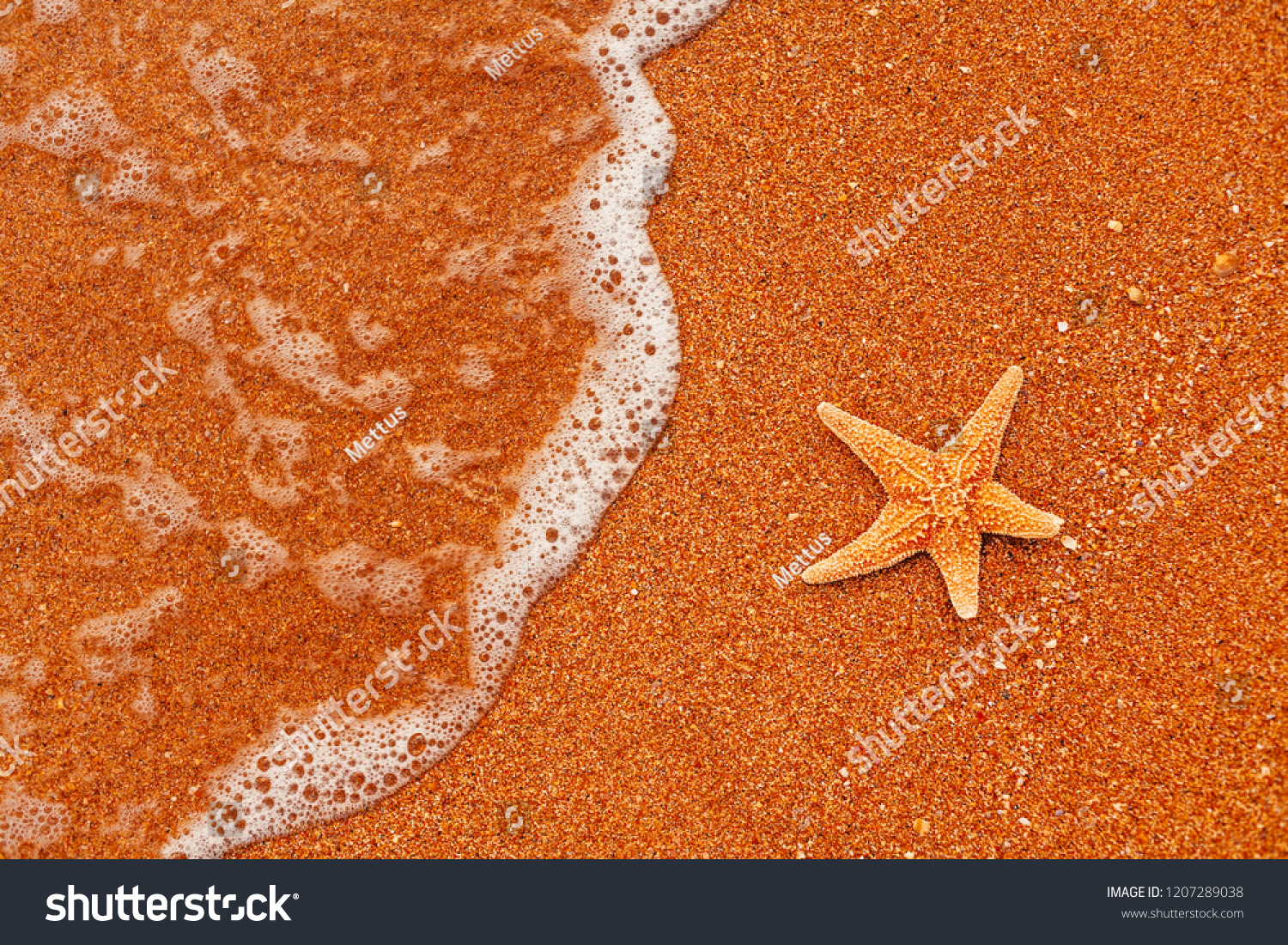 stock-photo-seastar-resting-on-coarse-sa