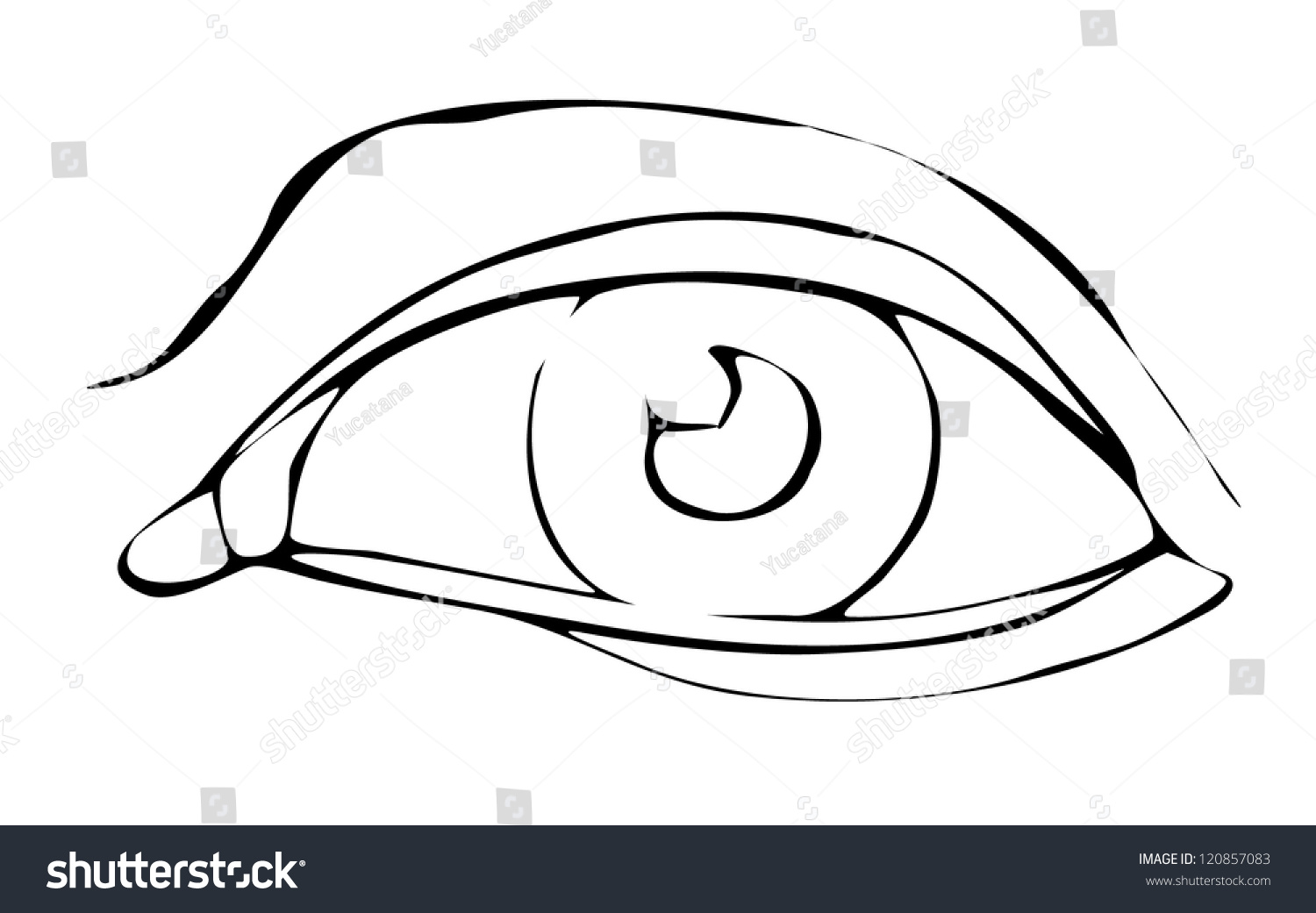 Figure Structure Eye Outline Stock Vector 120857083 - Shutterstock