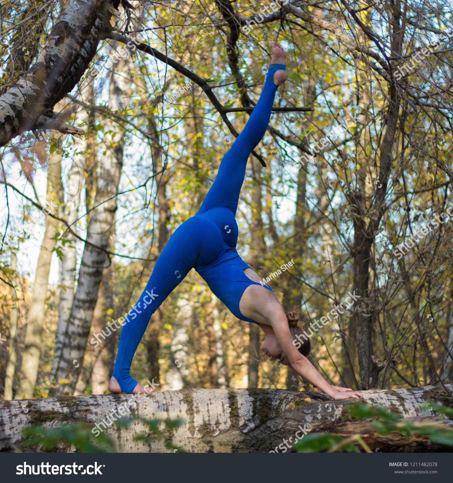 https://image.shutterstock.com/z/stock-photo-girl-doing-stretching-on-the-tree-in-the-forest-1211482078.jpg