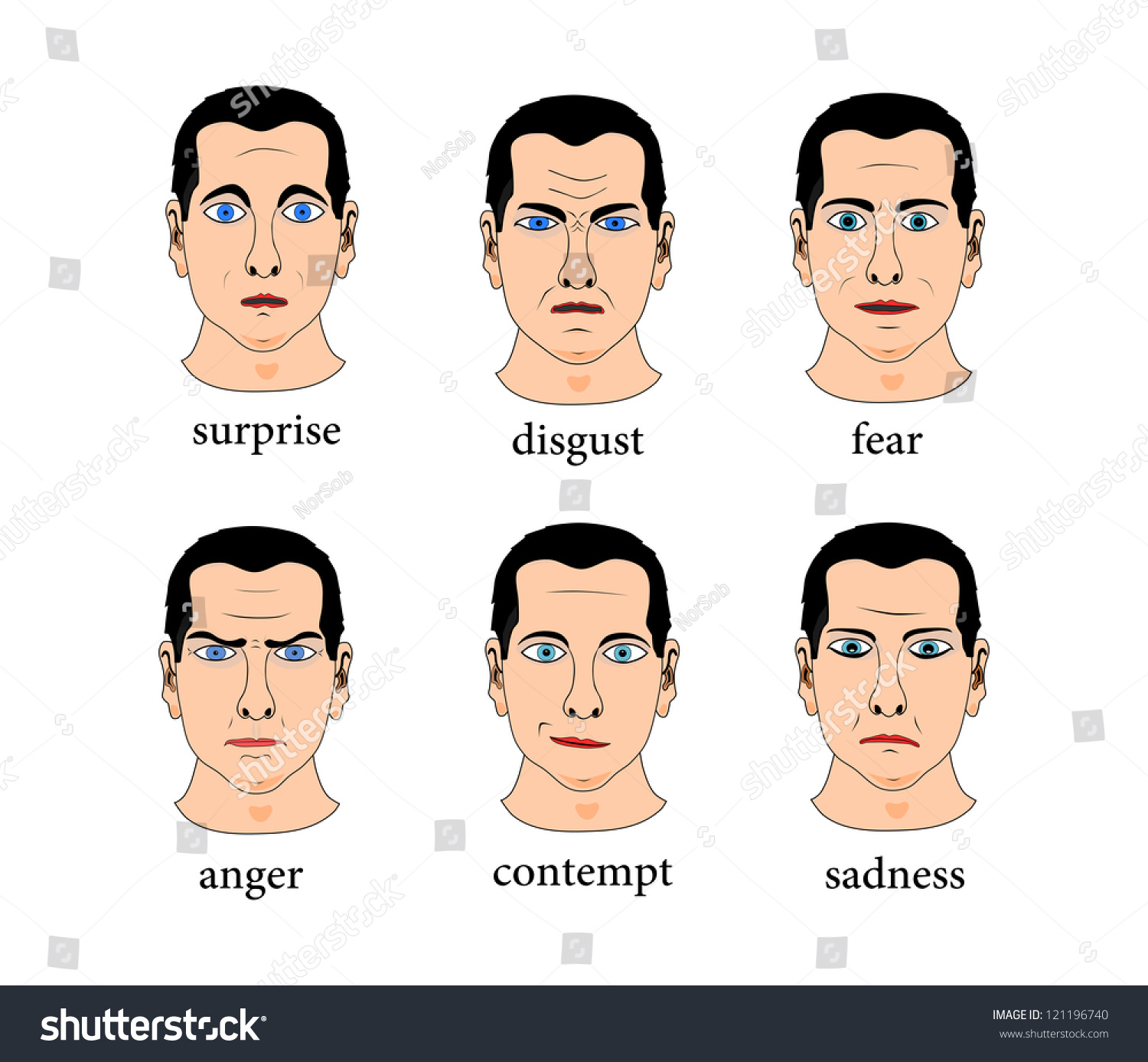Expression the six basic facial