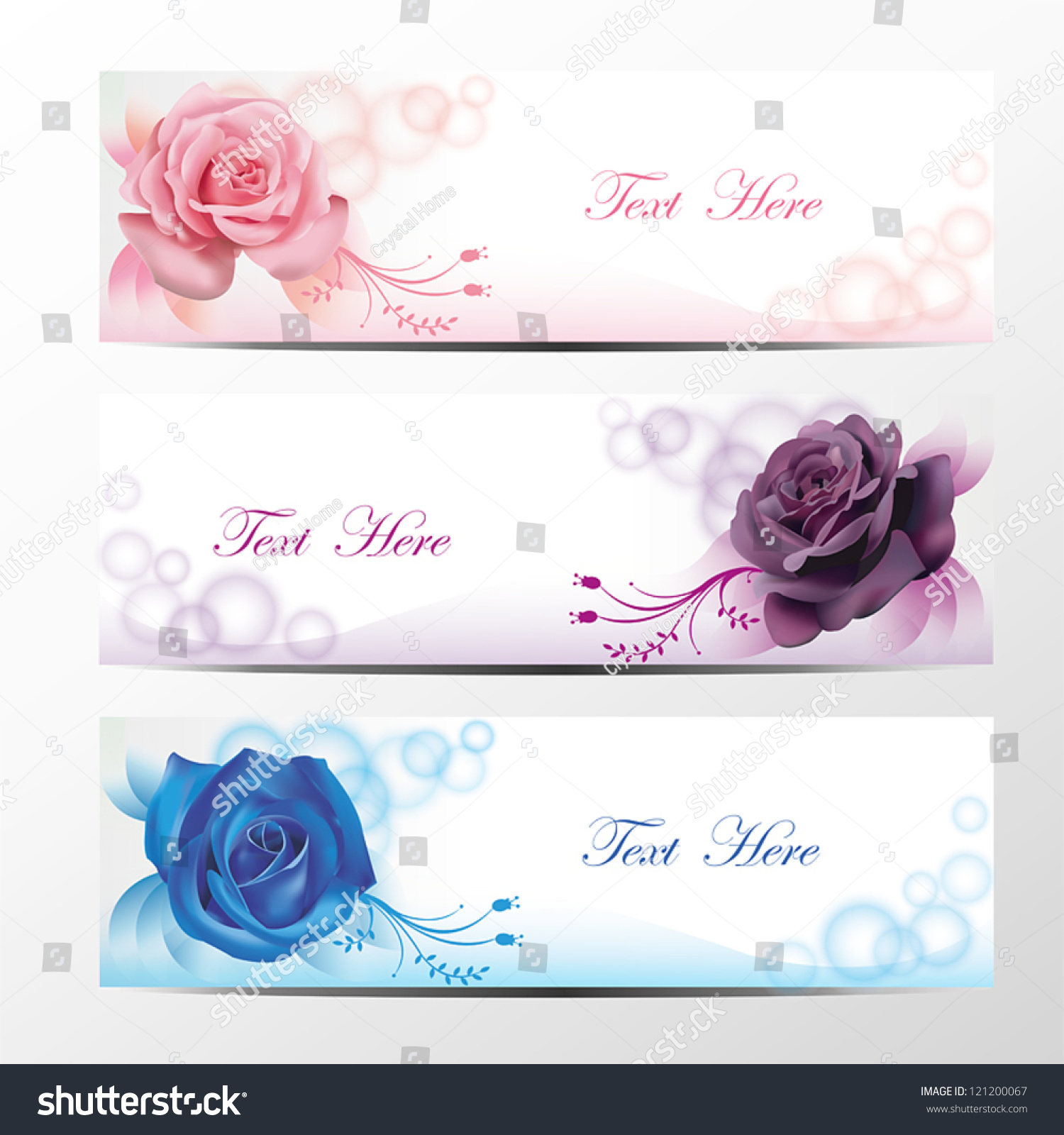Pink Blue Purple Rose Flower Flora Stock Vector Royalty Free