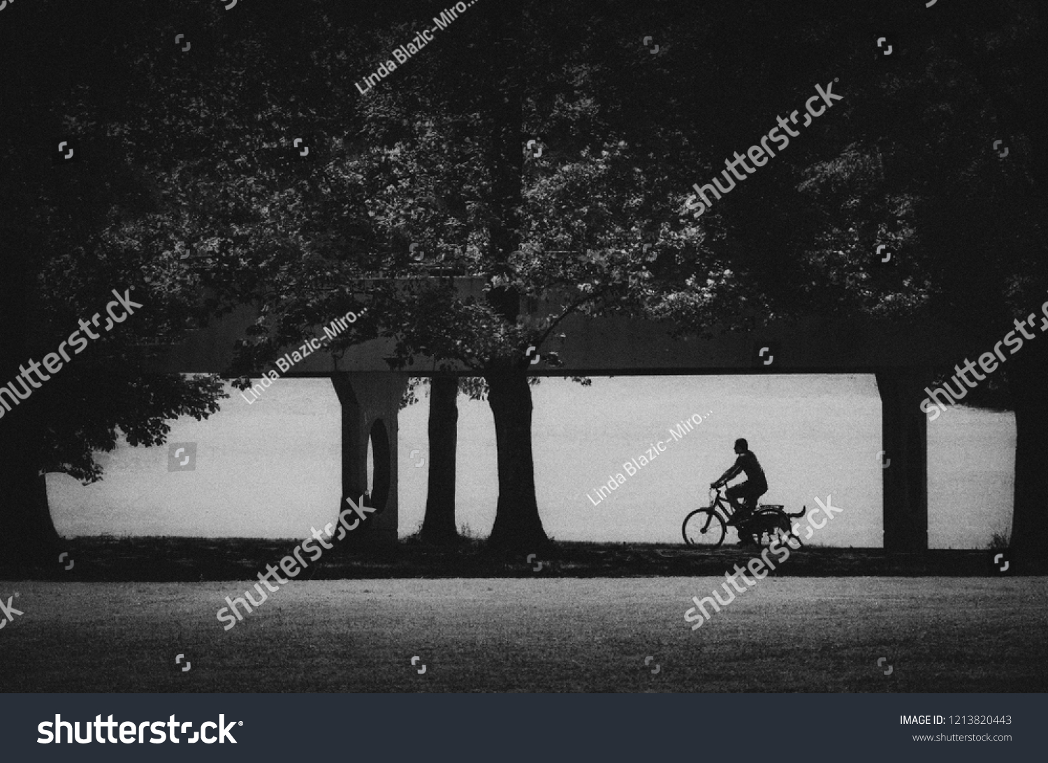 Outstanding Silhouette Man On Bicycle Dog Running People Parks Gmtry Best Dining Table And Chair Ideas Images Gmtryco