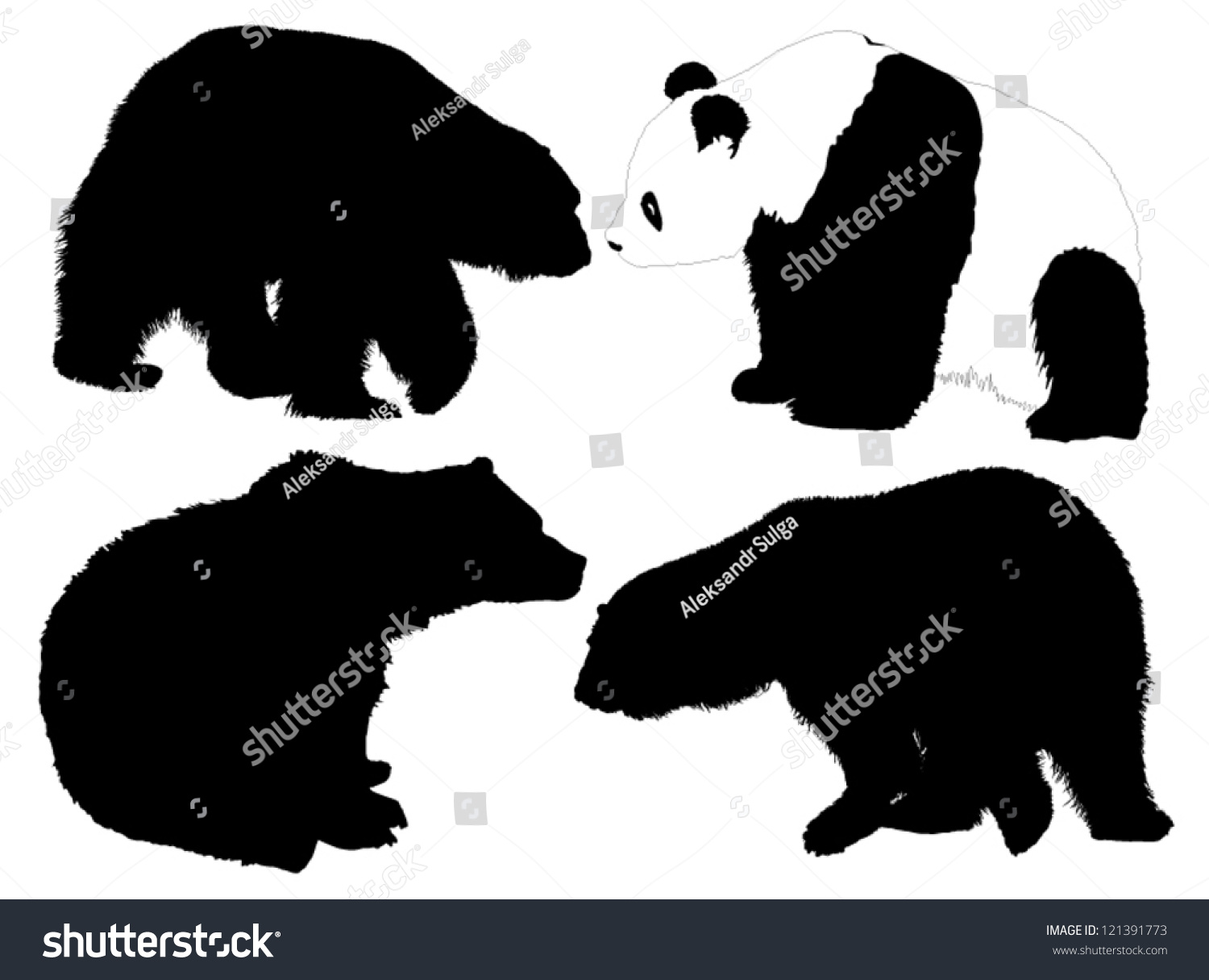 bear silhouette on white background stock vector   - bear silhouette on white background