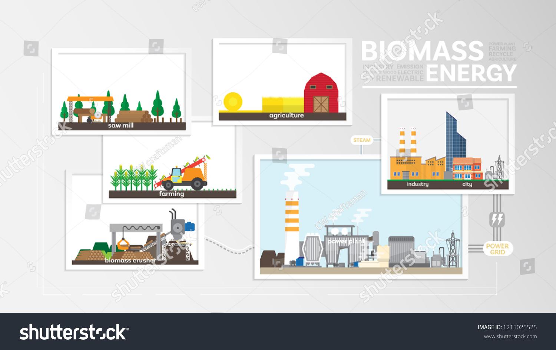 Biomass Energy How Produce Biomass Biomass Stock Vector