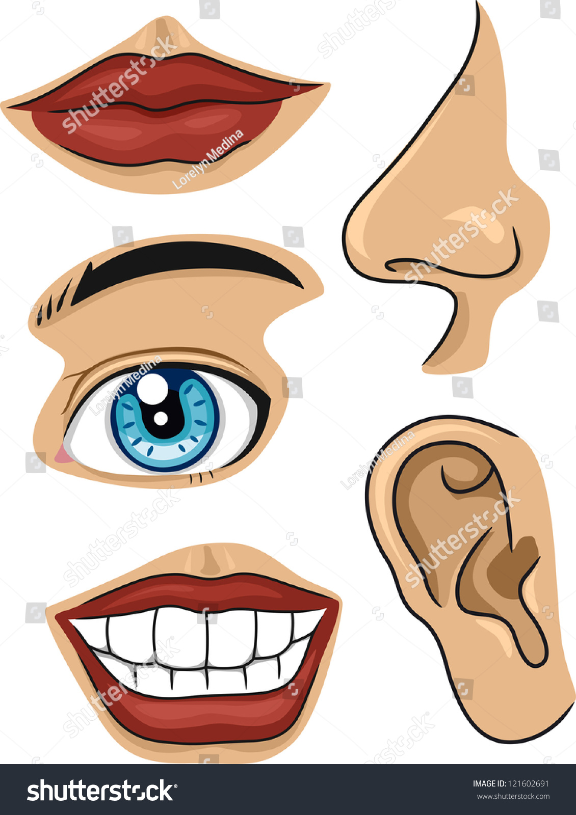 Illustration different parts face stock vector 121602691 shutterstock - Clipart visage ...