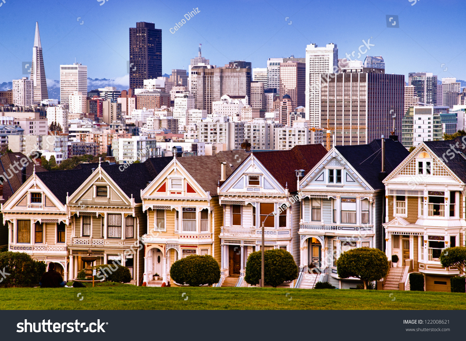 San franciscos skyline traditional victorian houses stock for Victorian traditional homes