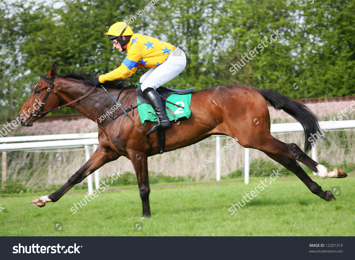 Race Horse And Jockey Running At Speed Stock Photo ...